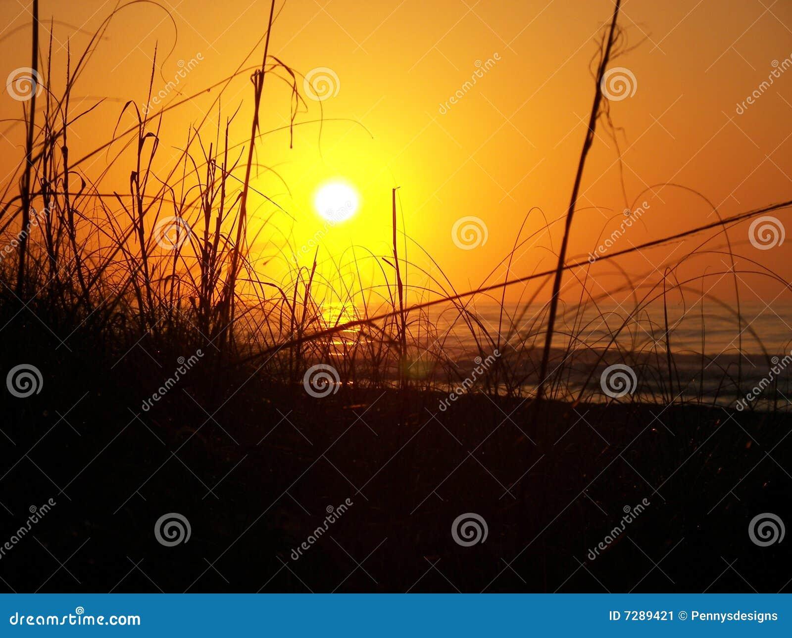 Salida del sol detrás de las dunas