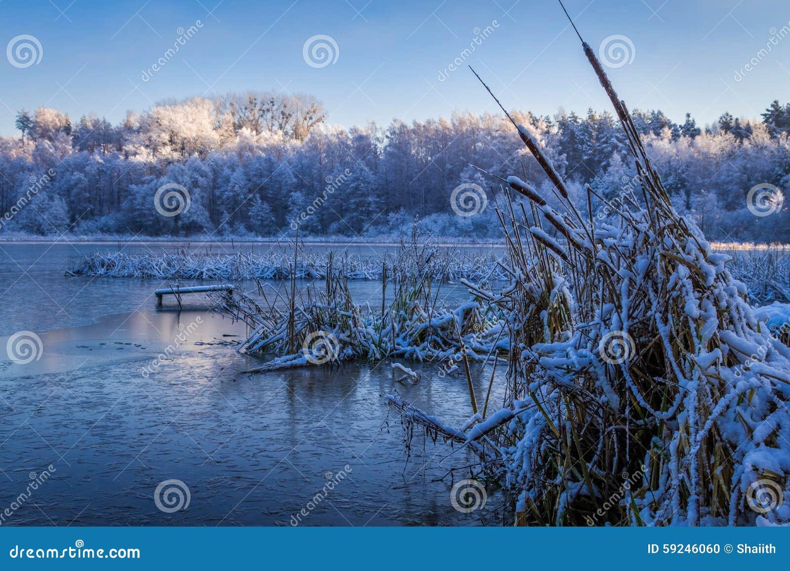Salida del sol en el lago del invierno cubierto con nieve