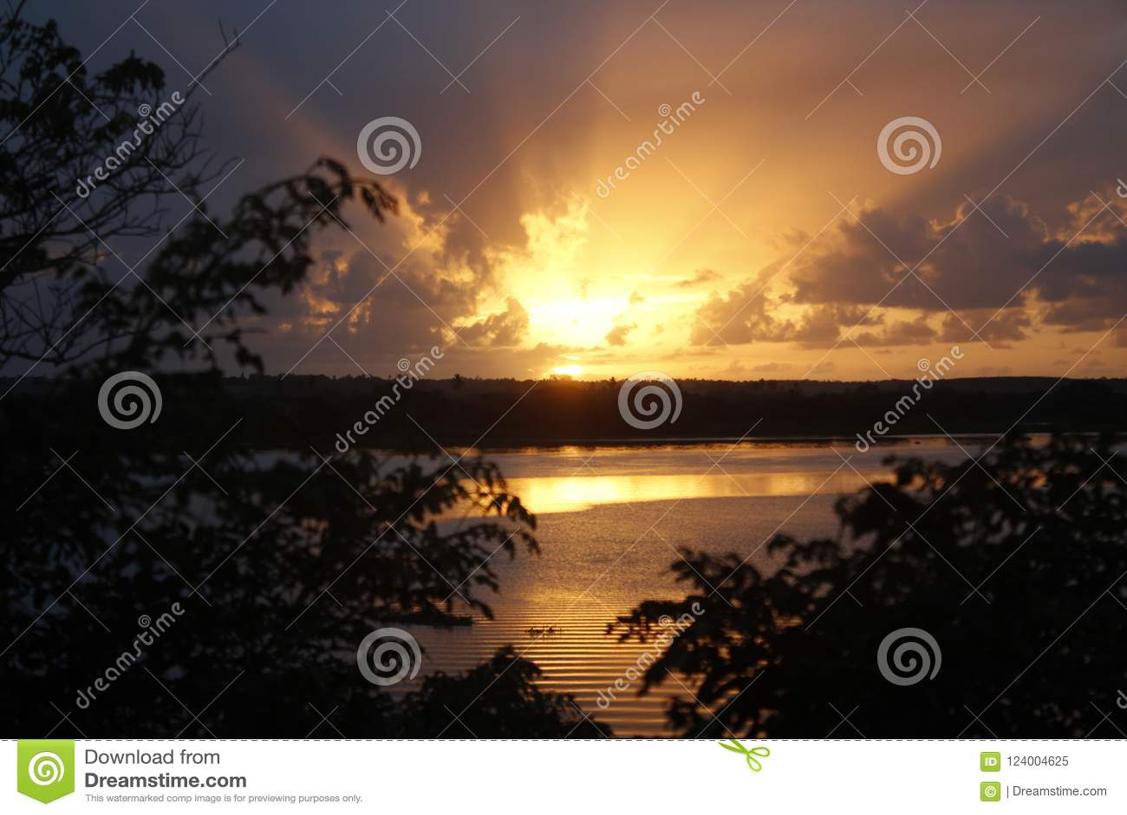 Salida del sol en el sao Francisco River con los árboles
