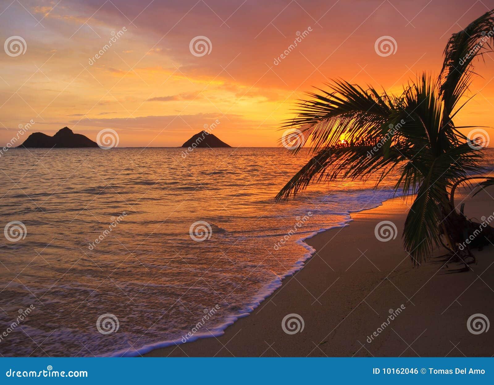 Salida del sol pacífica en la playa de Lanikai en Hawaii