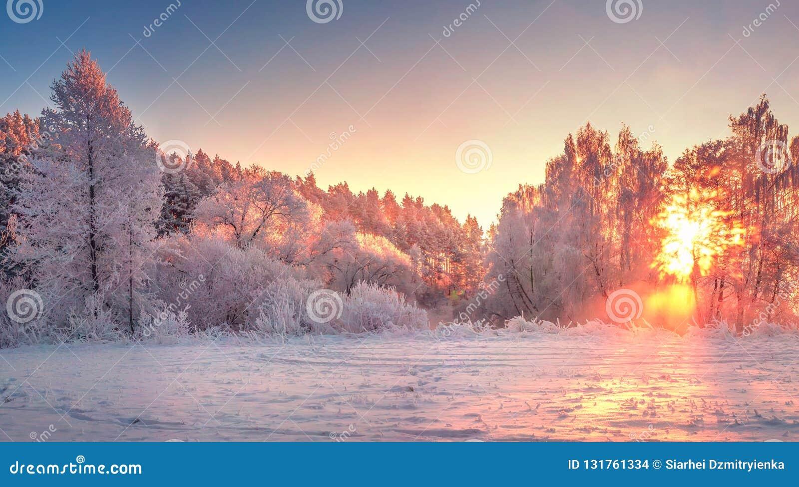 Salida del sol del paisaje de la mañana del invierno