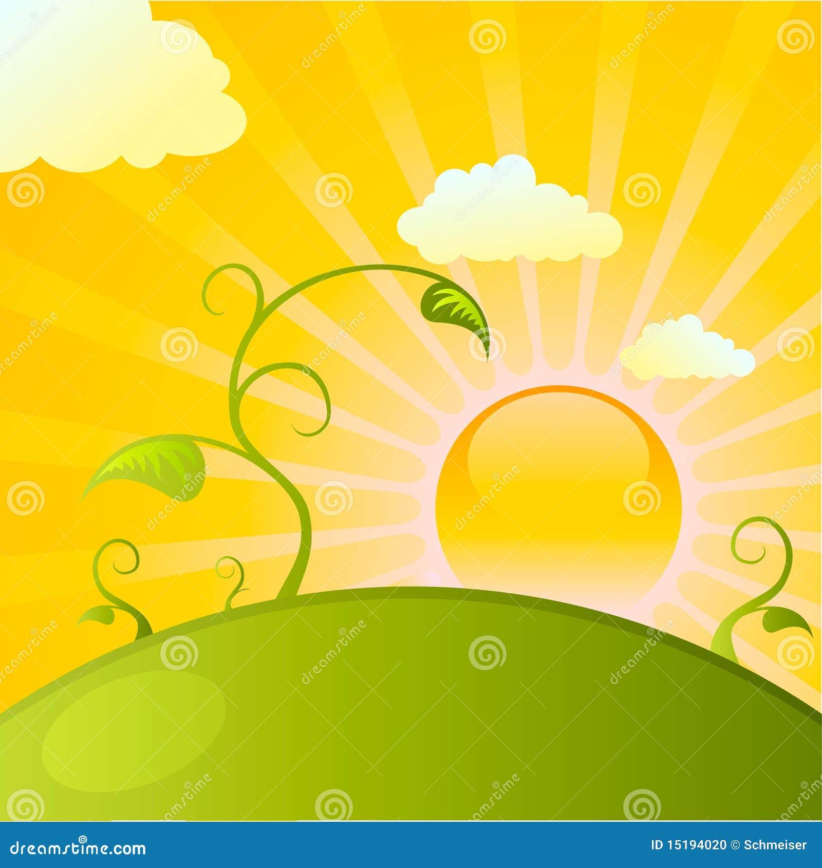 Salida del sol sobre el campo de plantas ilustraci n del - Flores que aguantan el sol ...