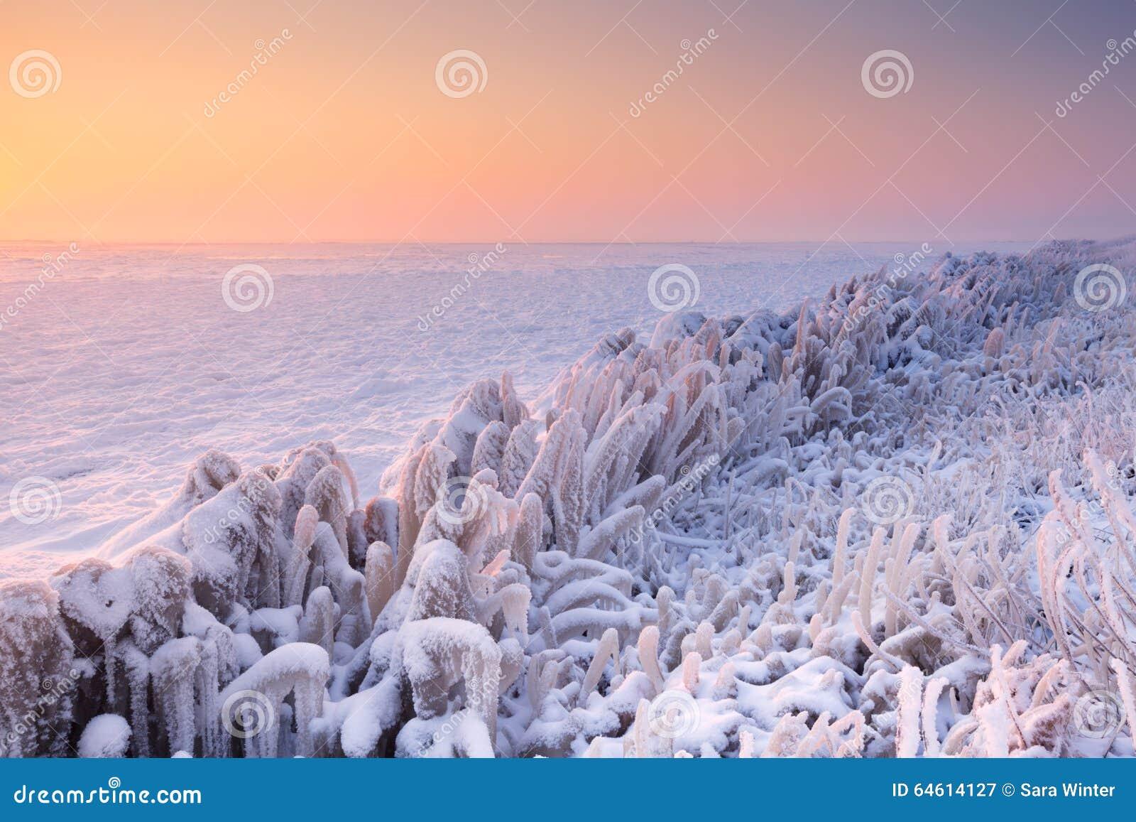 Salida del sol sobre un lago congelado en los Países Bajos