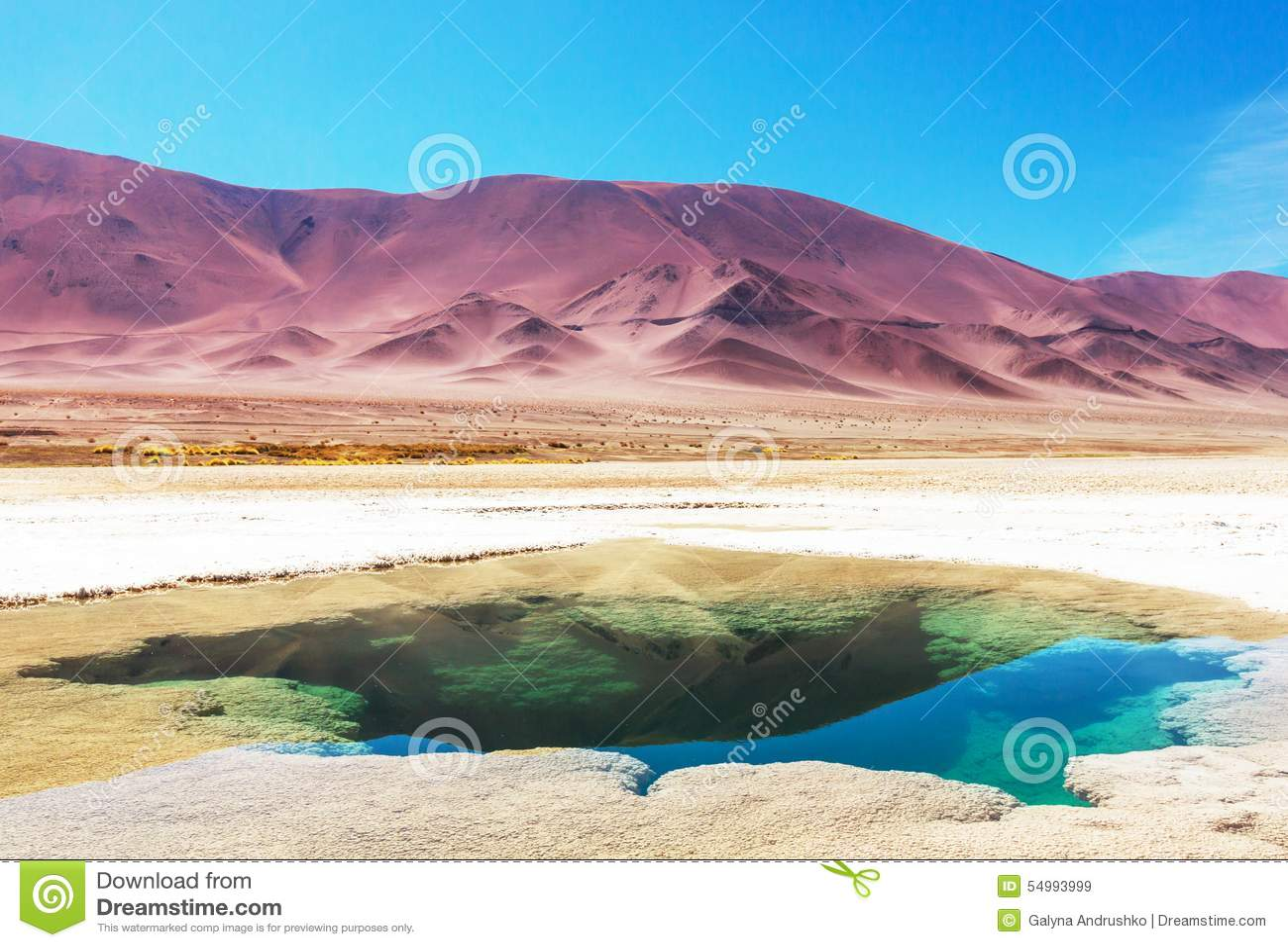 Salinas i Argentina