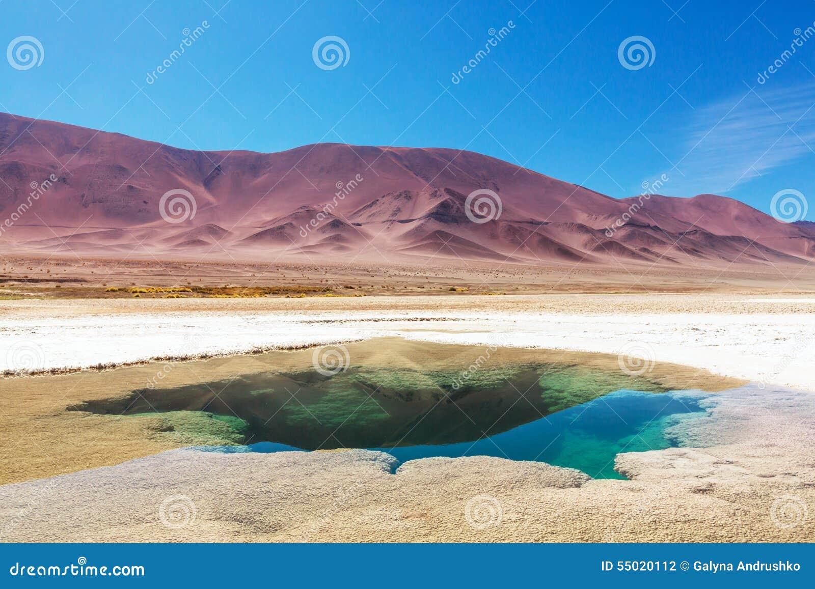 Saline in Argentina