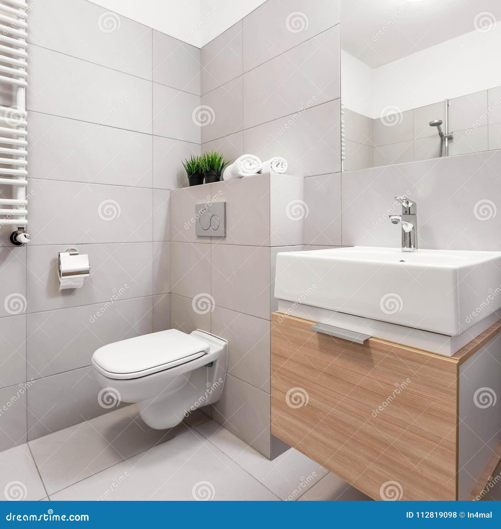 Salle De Bains Avec La Toilette Et Le Bassin Photo stock ...
