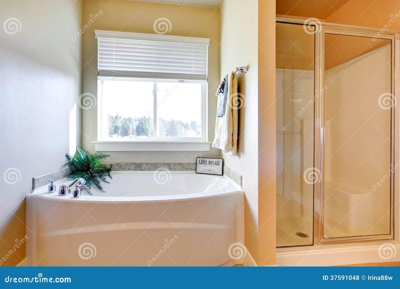 salle de bains blanche lumineuse avec la fen tre photos. Black Bedroom Furniture Sets. Home Design Ideas