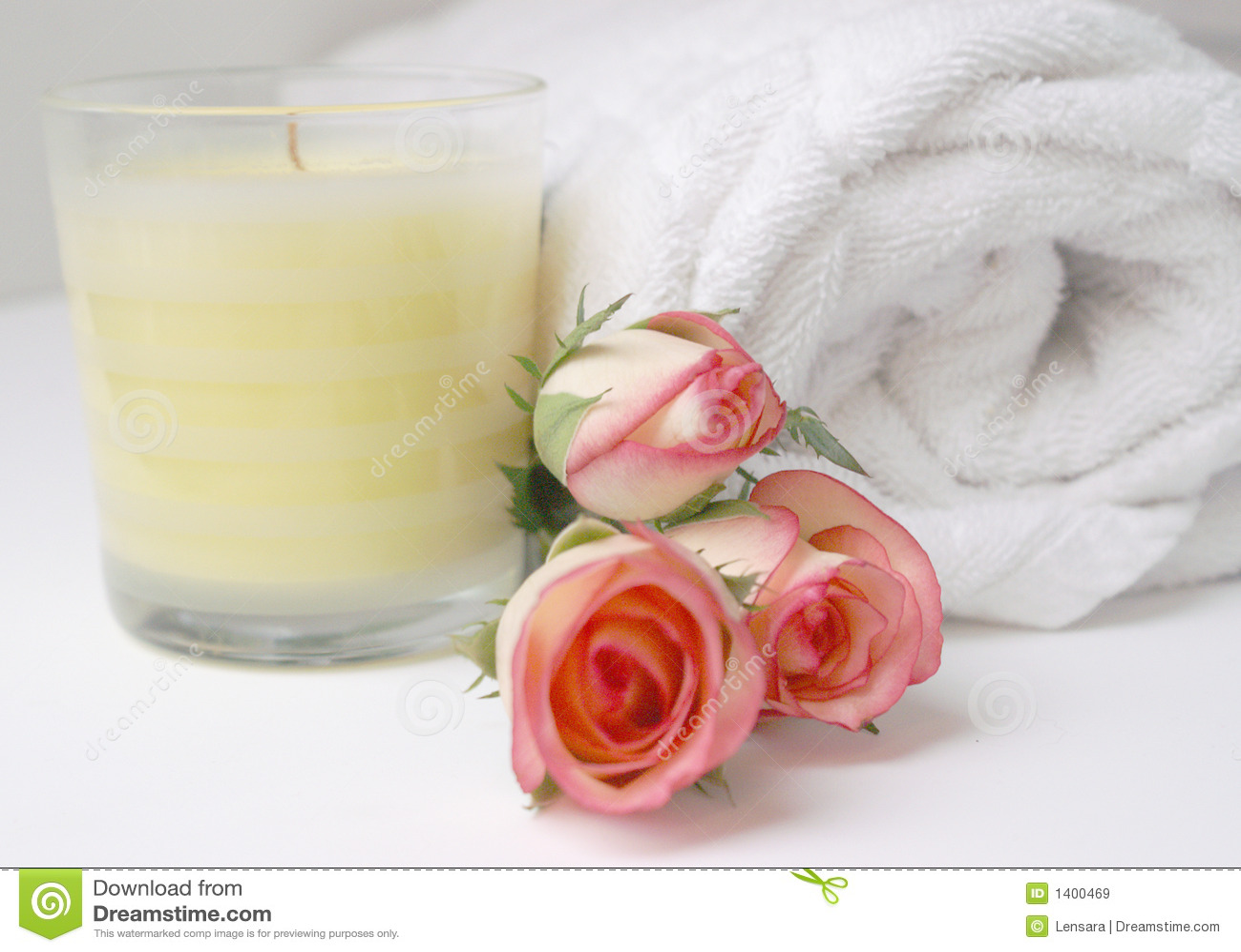 Salle de bains de bourgeon de Rose