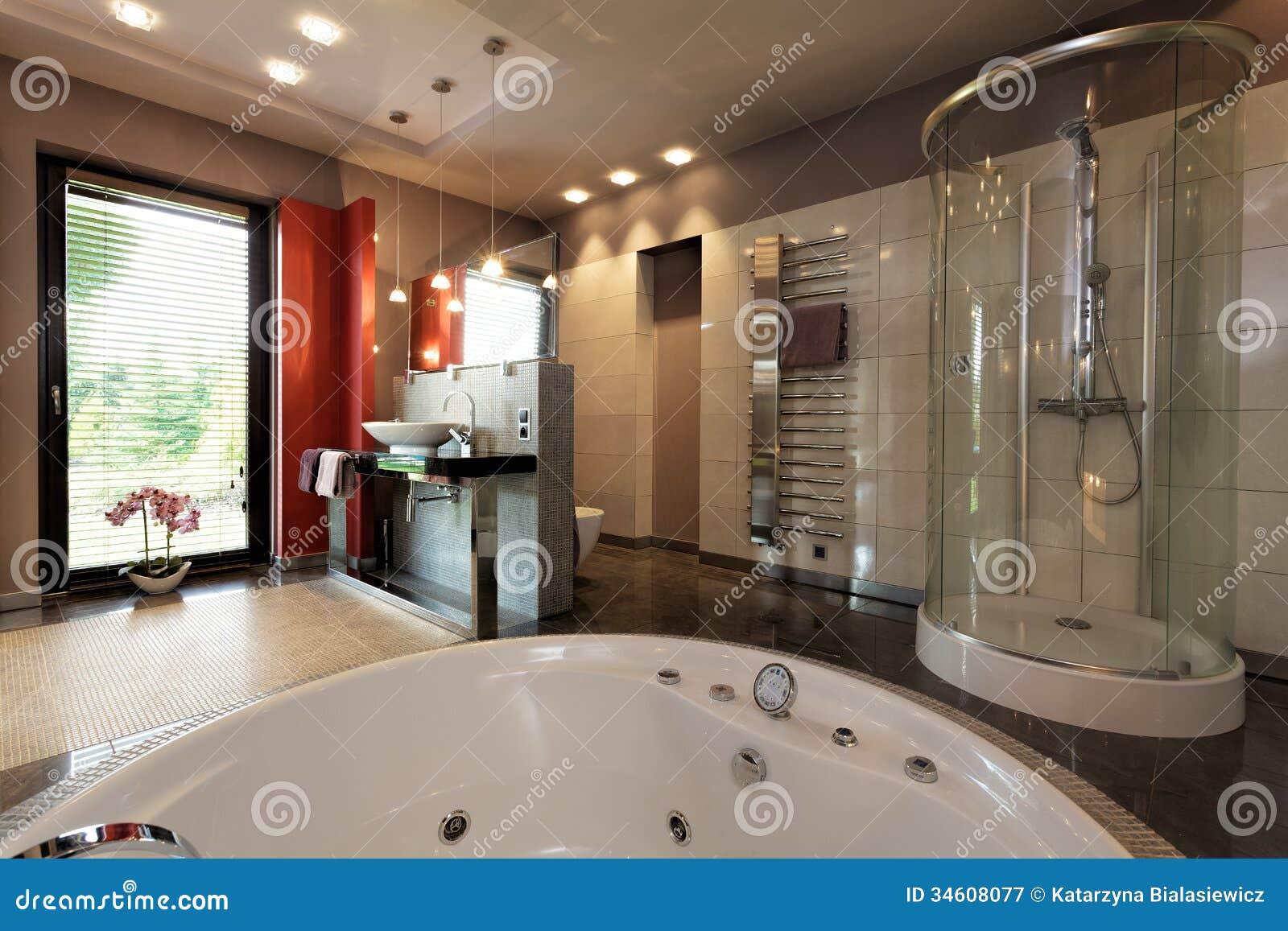 Salle De Bains De Luxe Avec Le Bain Et La Douche Image stock - Image ...