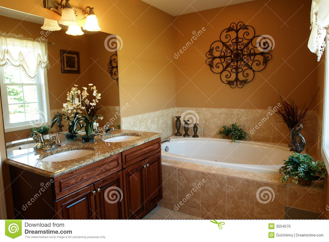 salle de bains de luxe avec le jacuzzi photo stock image 3554570. Black Bedroom Furniture Sets. Home Design Ideas