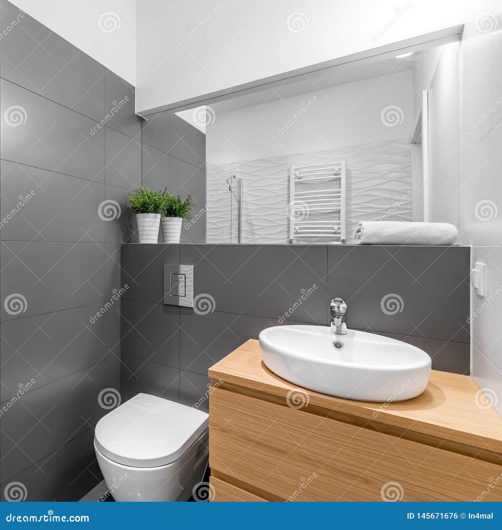 Salle De Bains Grise Moderne Dans Gris Et Blanc Photo stock ...