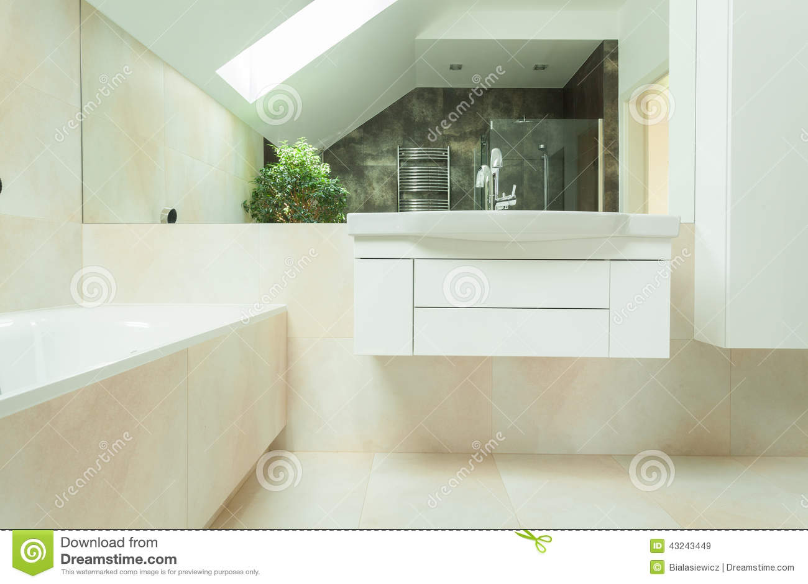 Salle De Bain Beige Meuble Taupe ~ salle de bains luxueuse moderne image stock image du bain maison