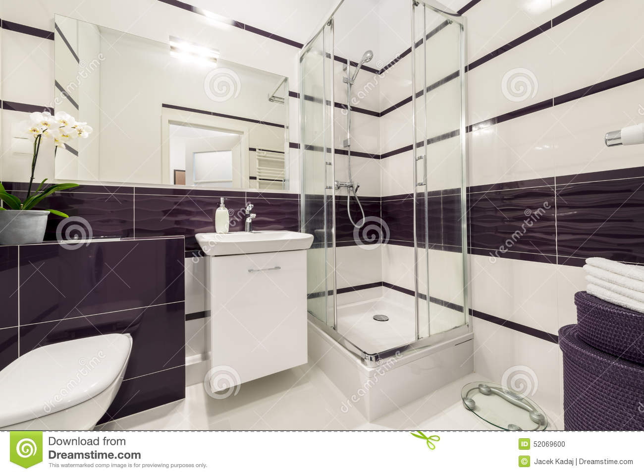 Salle de bains moderne avec le compartiment de douche photo stock image 52069600 for Photos douches modernes