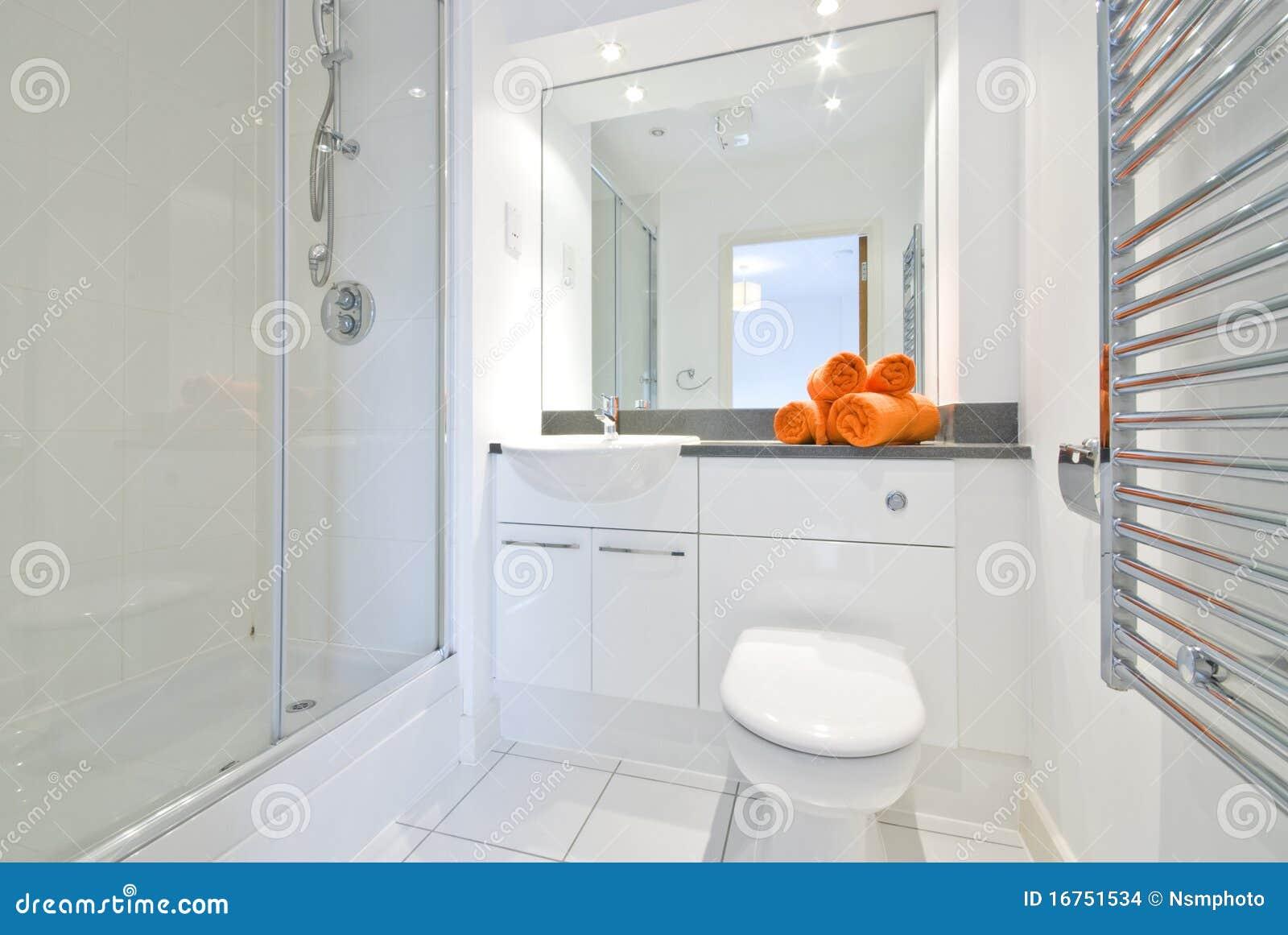 Salle de bains moderne dans la grande pi ce de douche for Photo salle de bain moderne blanche