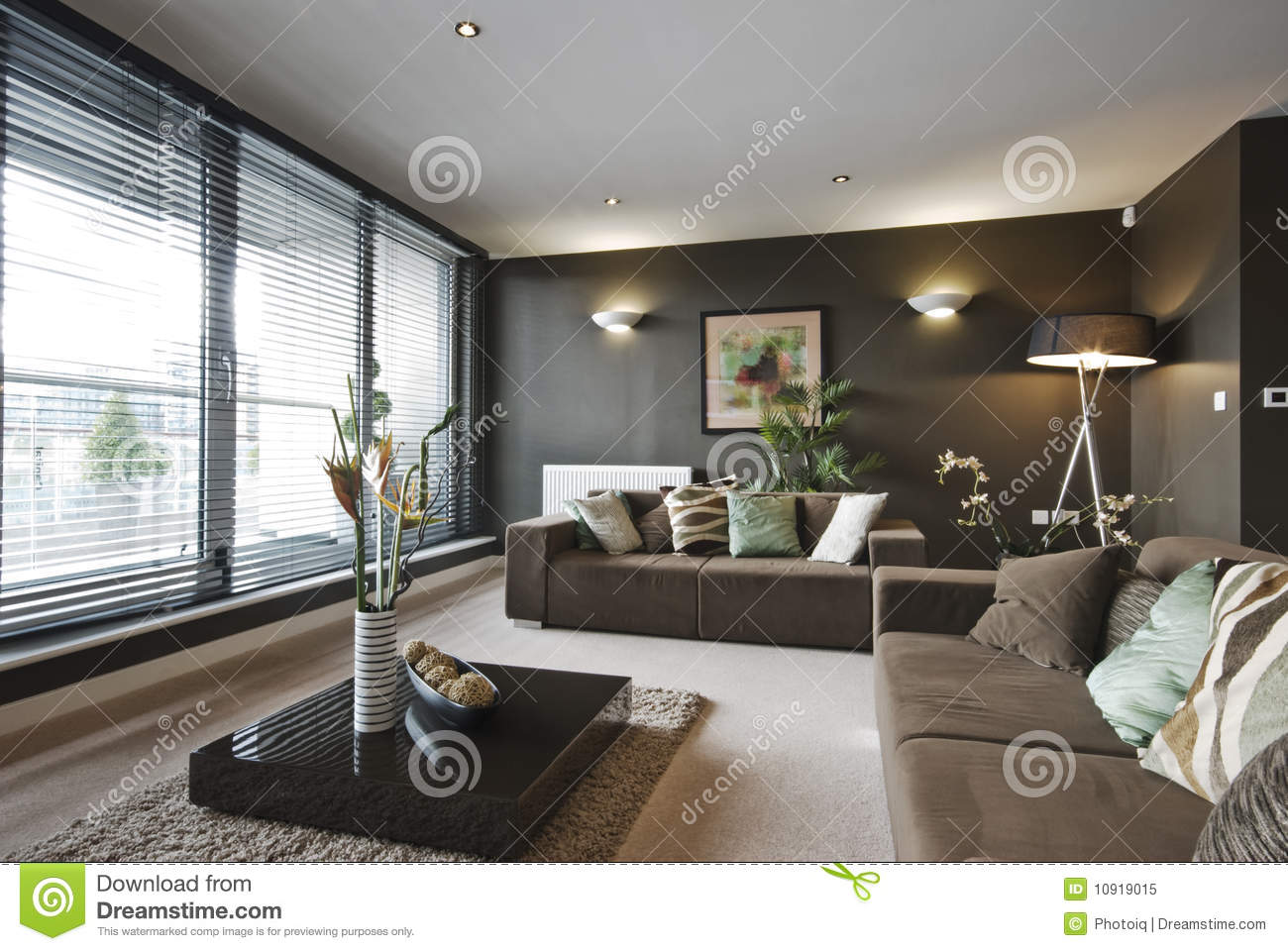 salle de s jour de luxe contemporaine image stock image du luxe centrale 10919015. Black Bedroom Furniture Sets. Home Design Ideas