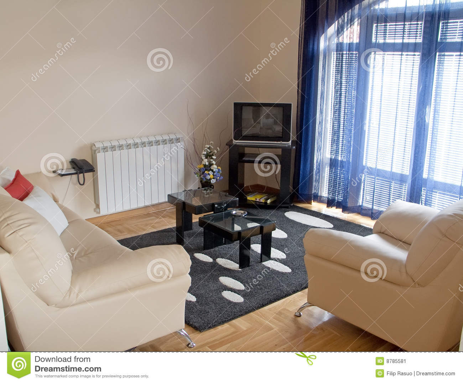 Salle de séjour intérieure