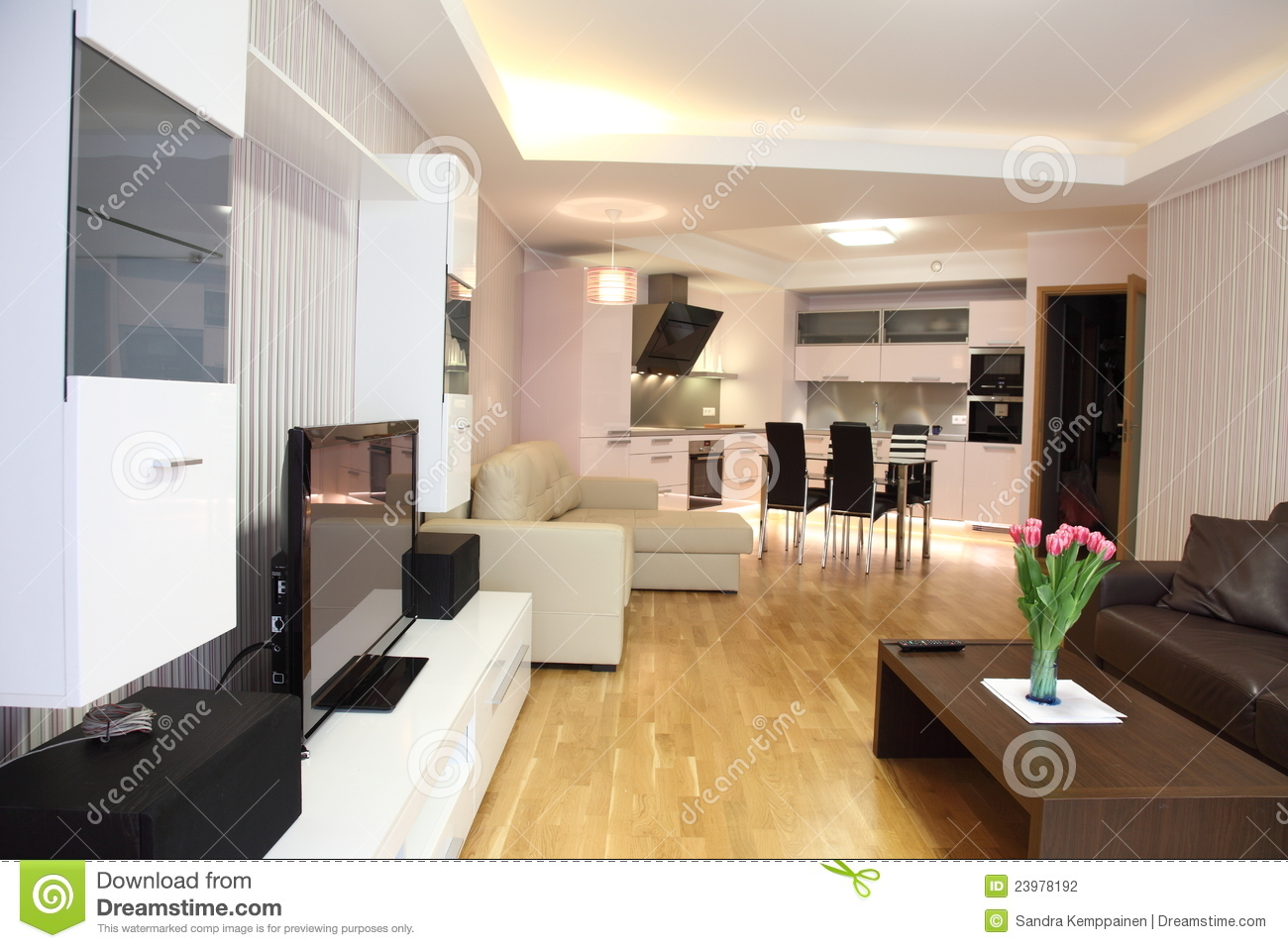 Salle de s jour moderne photo stock image du tag re for Modele decoration sejour