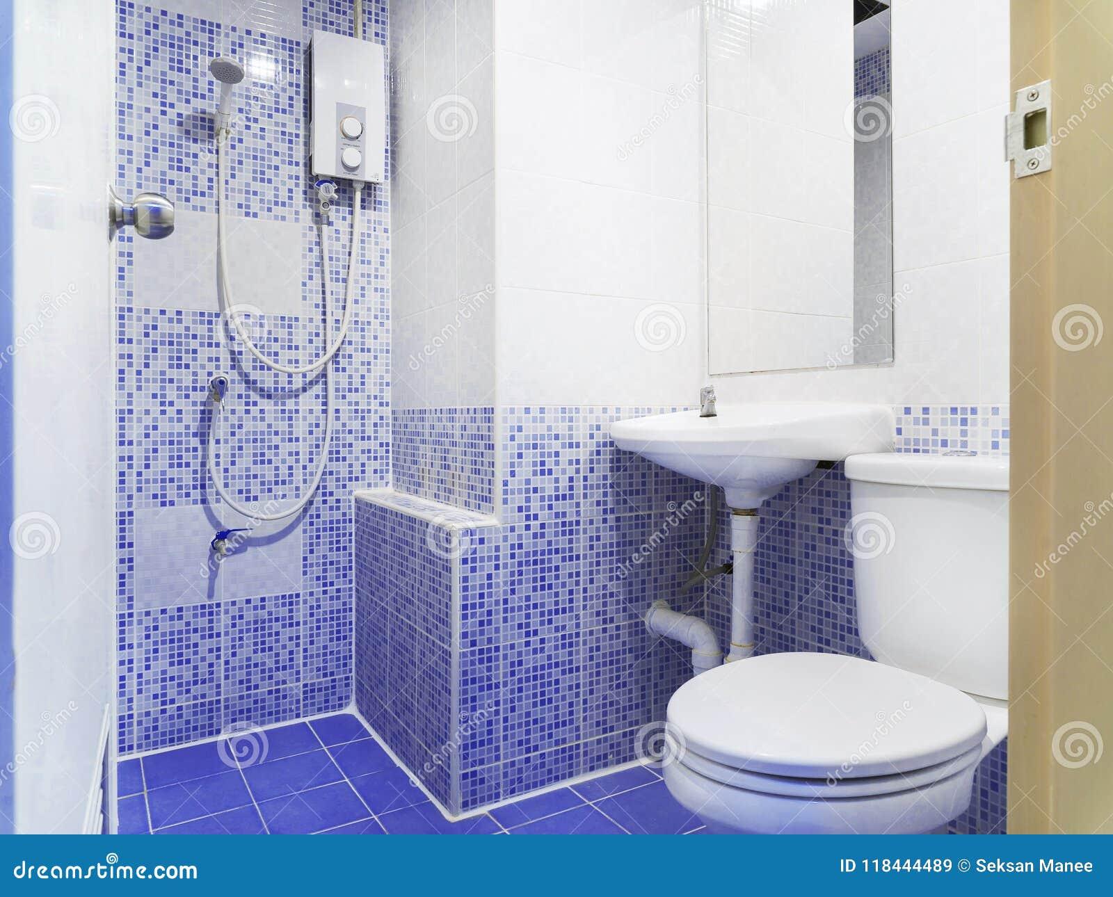 Salle De Toilette De Style Ancien Avec La Petits Décoration