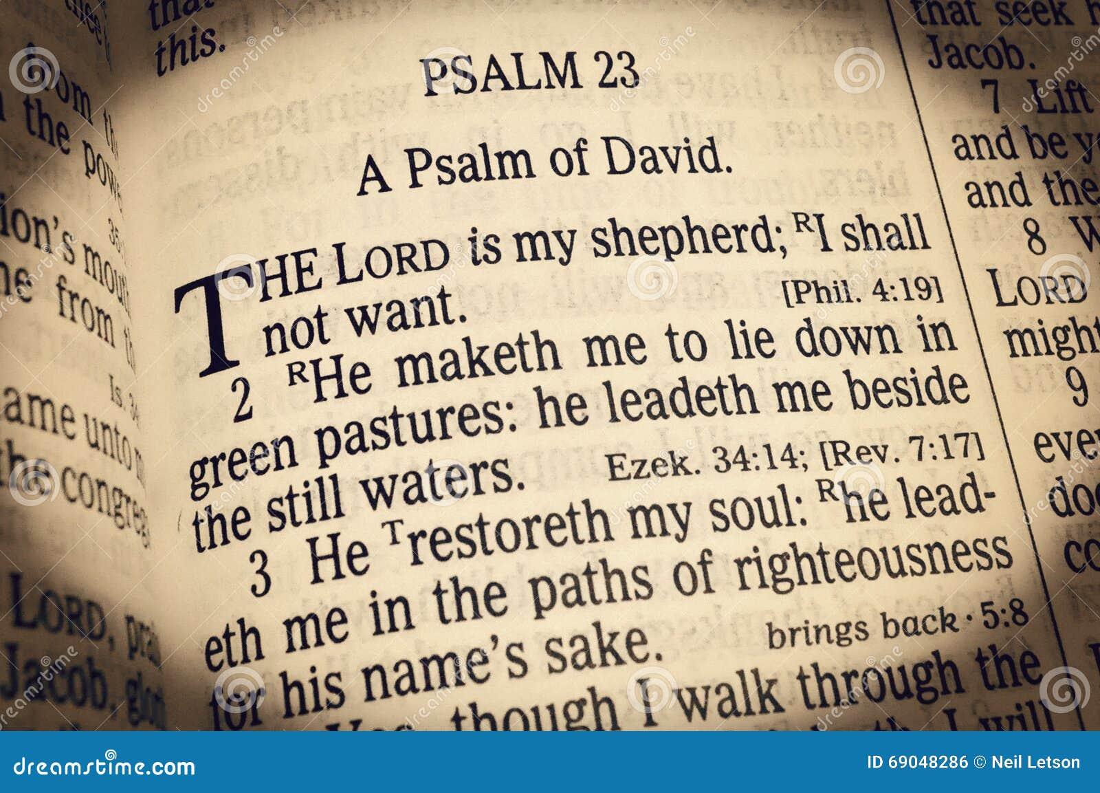 Salmo 23 - O senhor Ser Meu Pastor