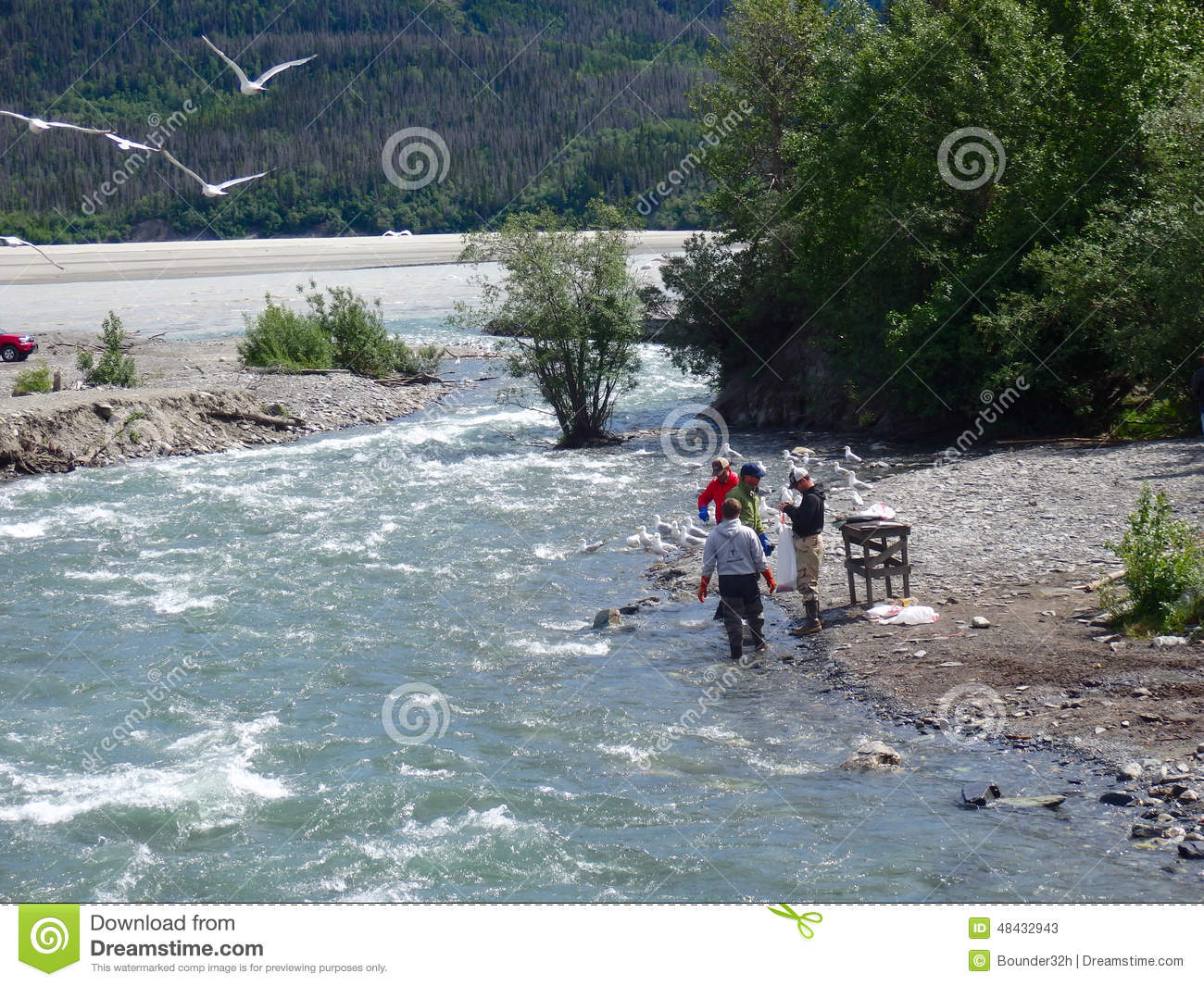 Salmon fishing in alaska editorial stock photo image for Best time to fish in alaska