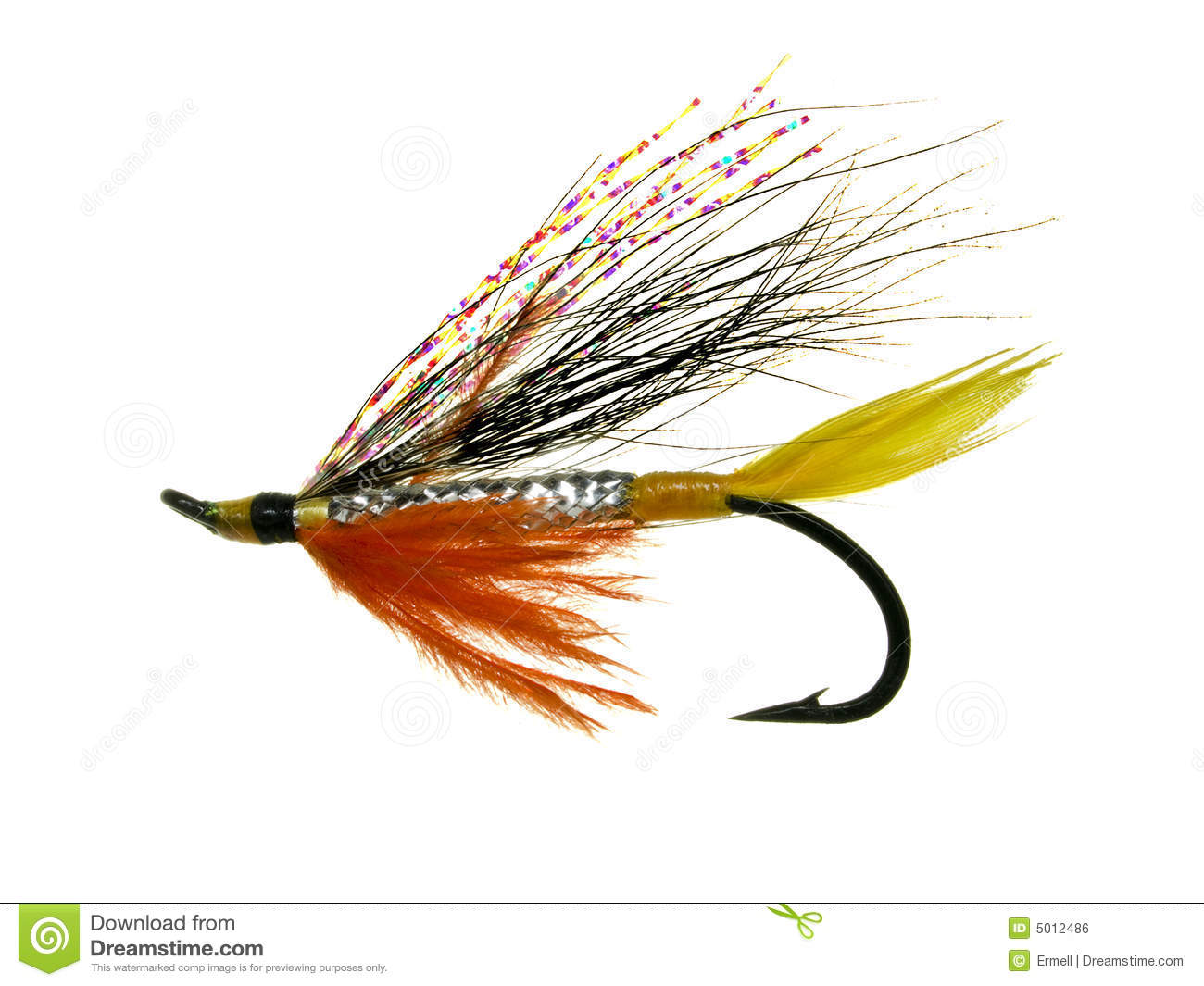 Salmon fly stock photo image of feathers salmon barb for Fly fishing feathers