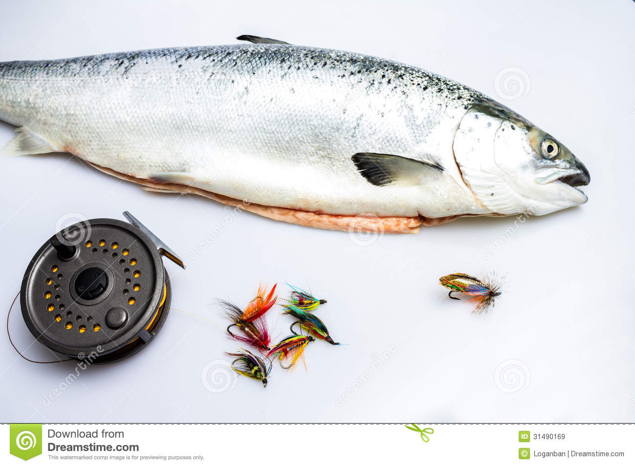 the catch and release of wild rod caught salmon Anglers are required to release any wild,  caught 715 chinook for 074 fish per rod,  of the total catch quota) coastwide all-species salmon.
