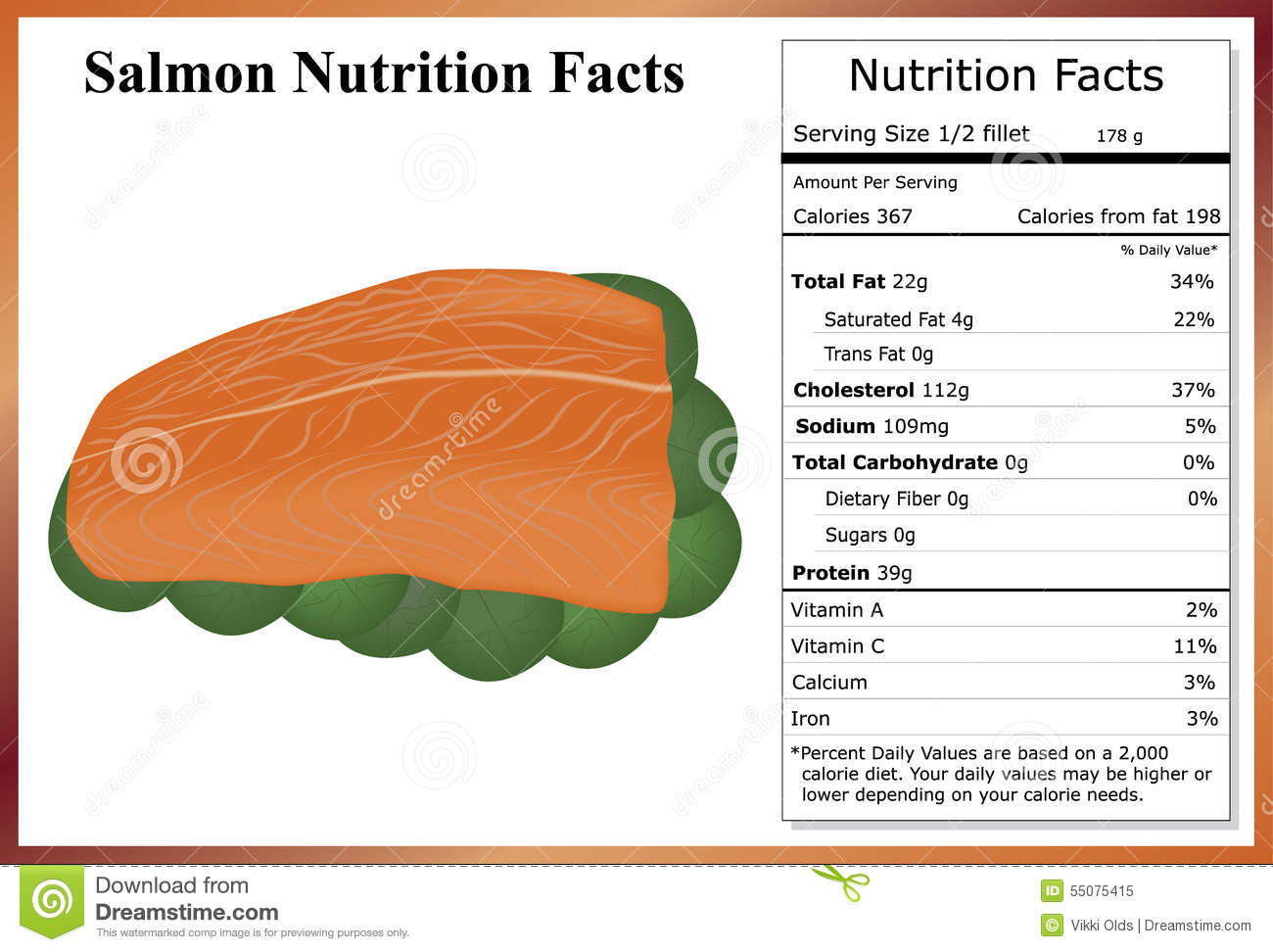 salmon nutrition facts stock vector illustration of facts 55075415. Black Bedroom Furniture Sets. Home Design Ideas