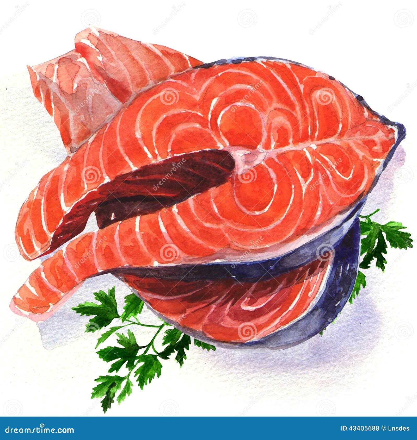 Salmon Stock Illustrations – 17,560 Salmon Stock Illustrations ...