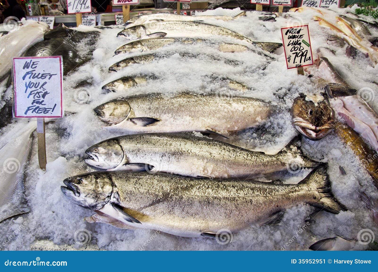 Salmones frescos
