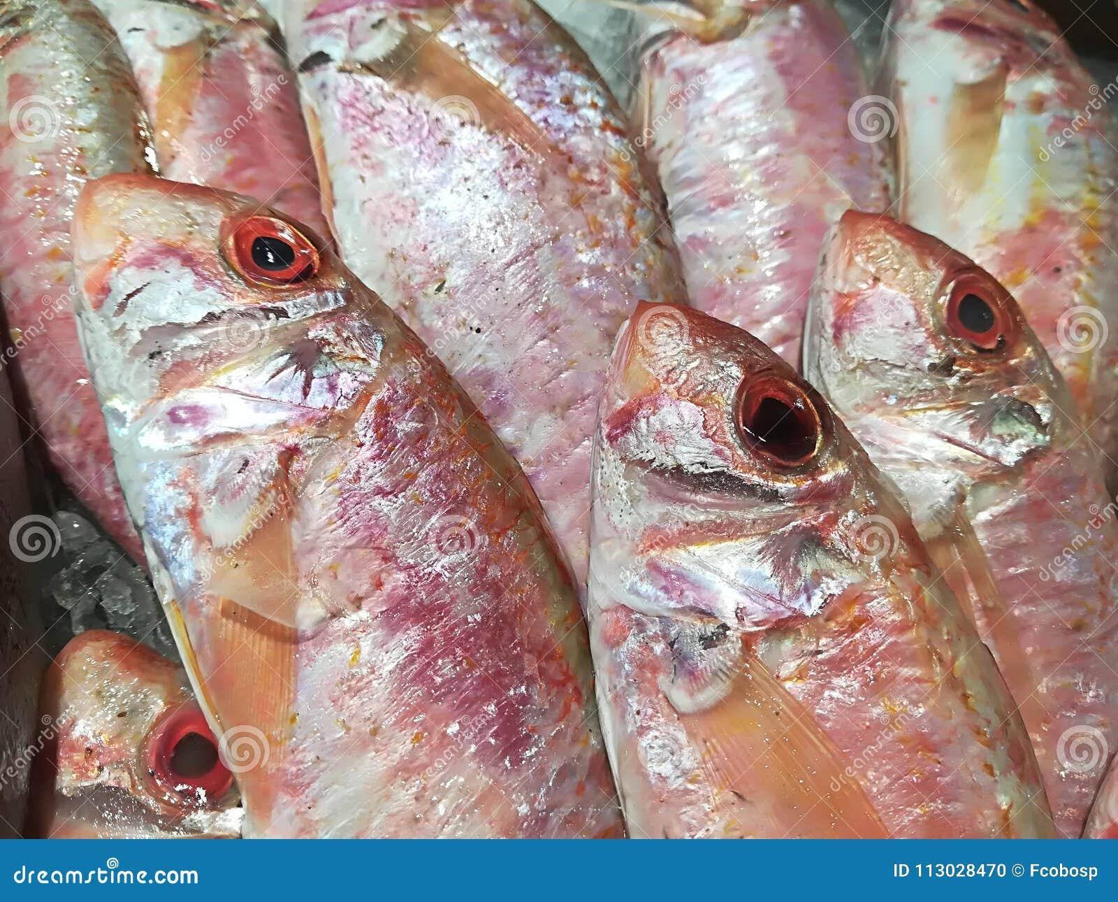 Salmonetes rojos