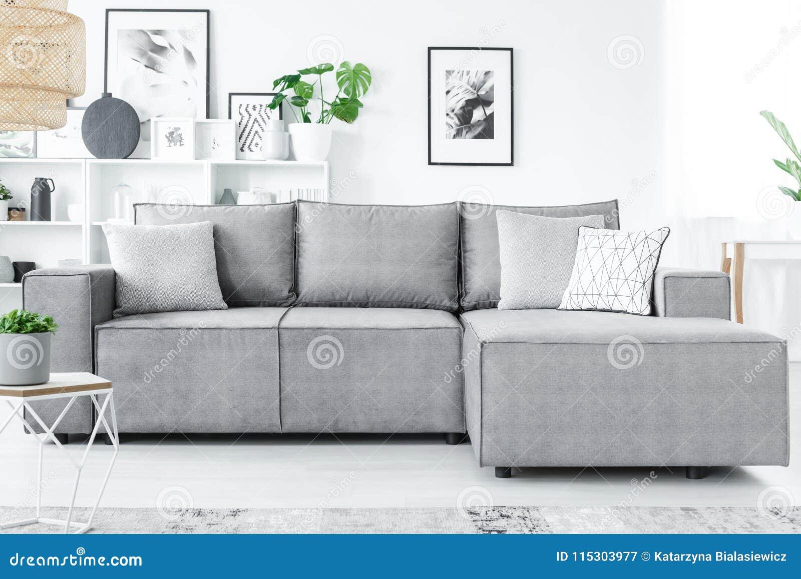 Salon gris et blanc image stock. Image du pièce, traçage ...