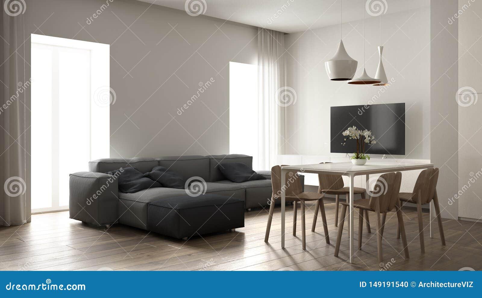 Salon Minimaliste Conception Int Rieure Sofa Gris Moderne