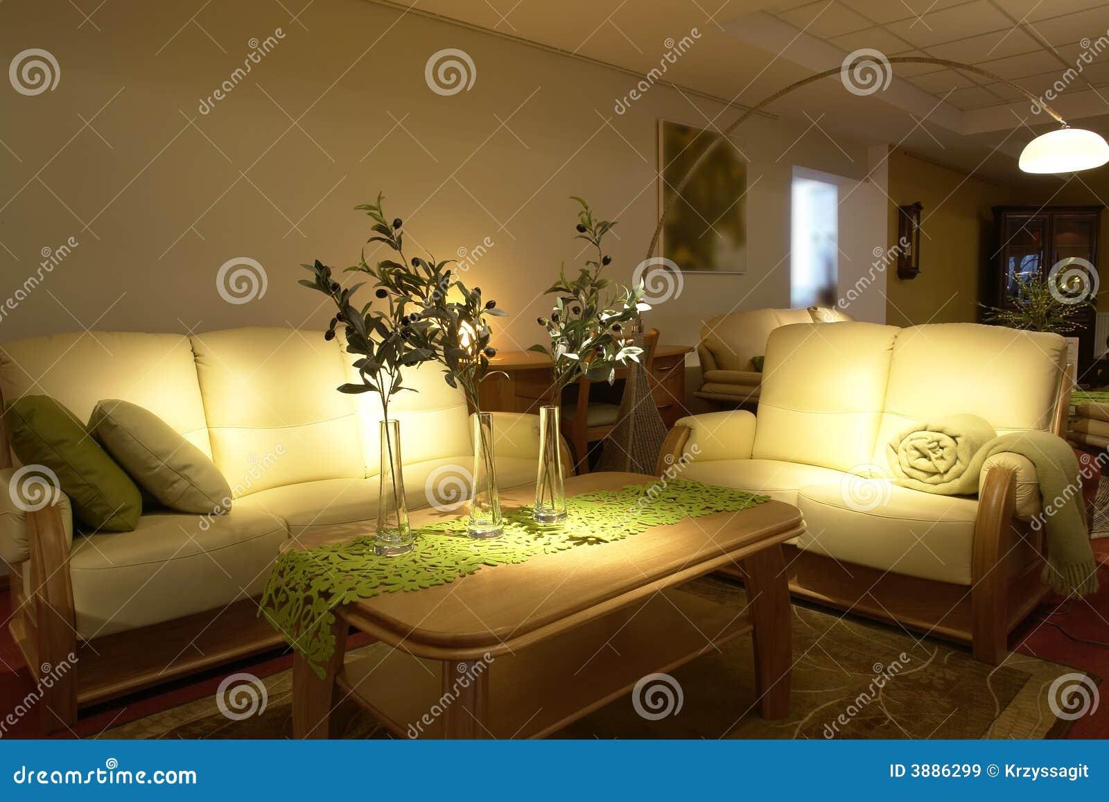 Salone moderno comodo