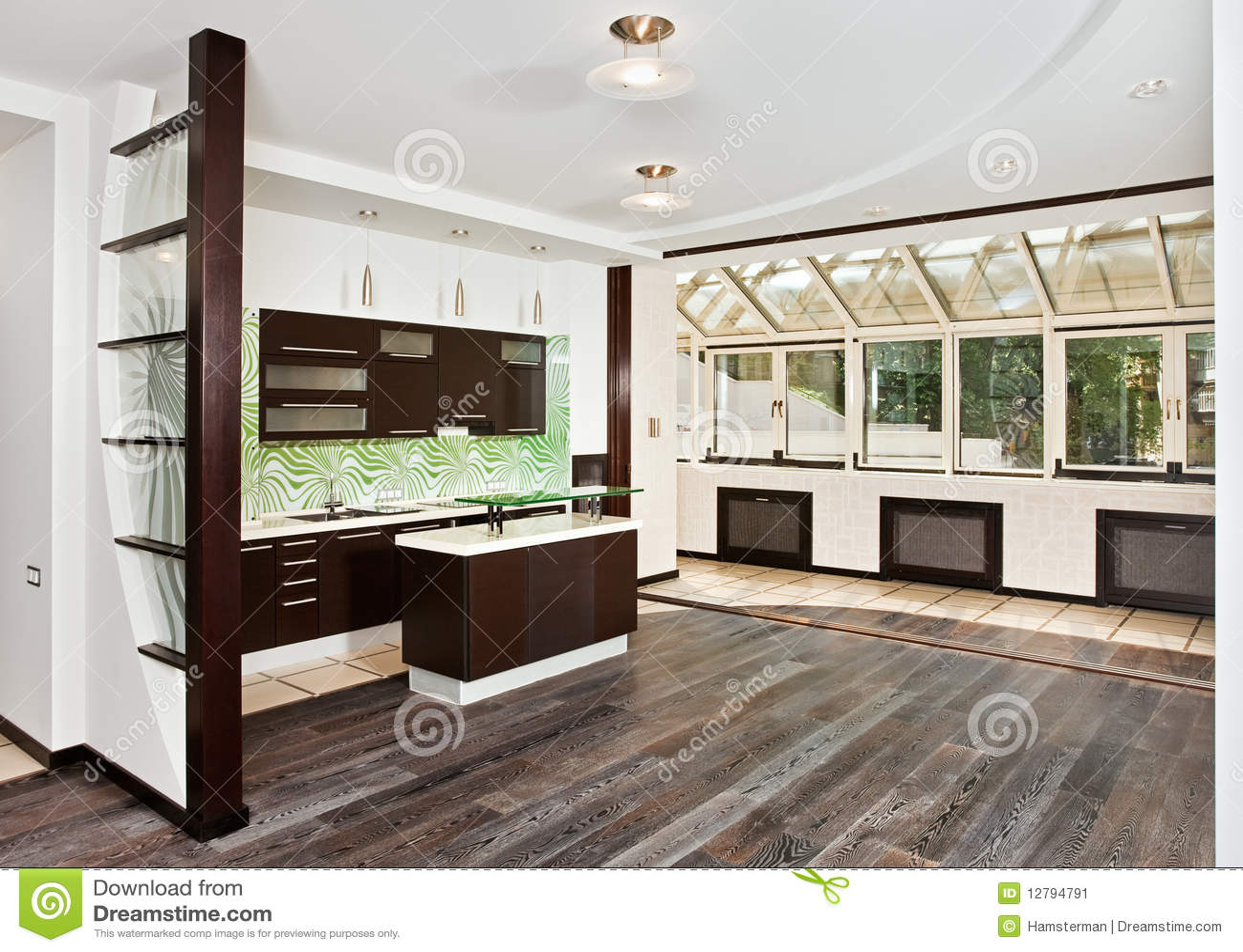 Salotto E Cucina Moderni Con Il Pavimento Scuro Immagine ...