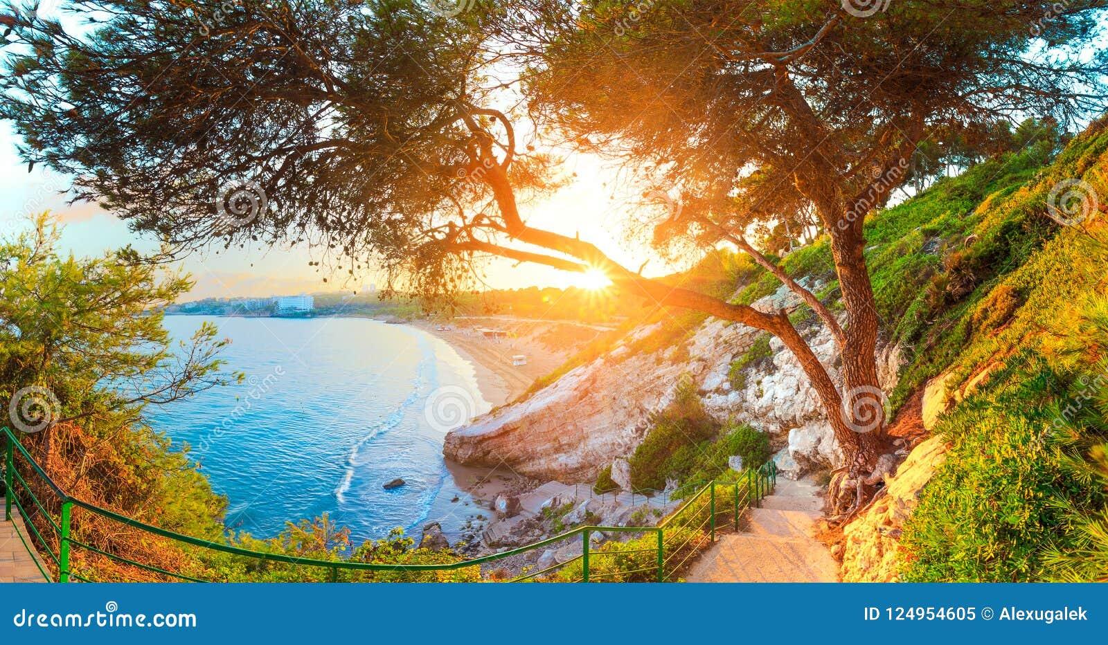 Salou Испания seascape солнечный Зеленые деревья и трава на Косте Dorada плавают вдоль побережья линия
