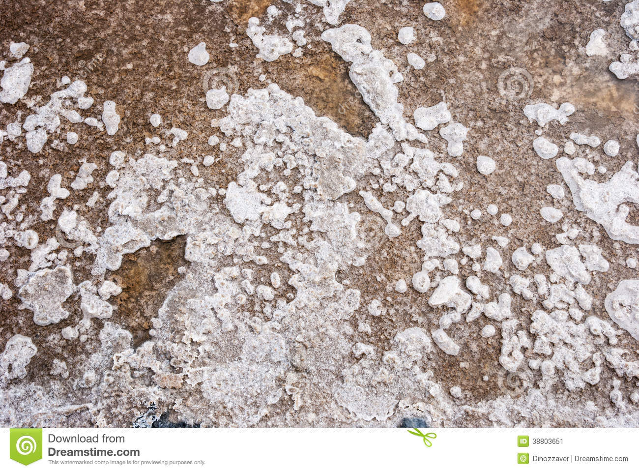 Salt crystals in evaporation pond close up stock photo for Design of evaporation pond