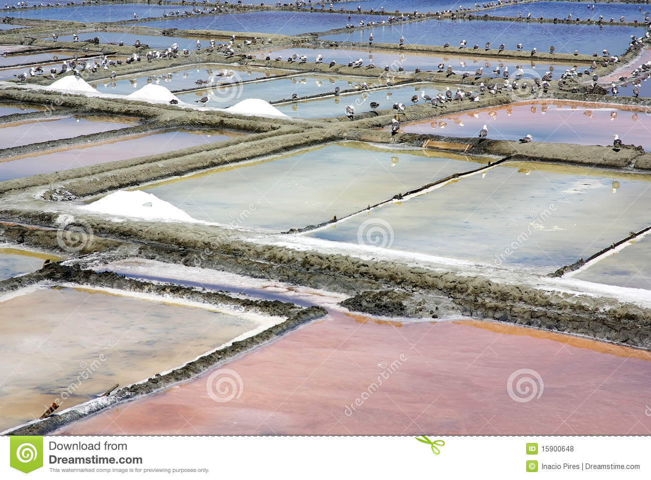 Salt farm in Aveiro.