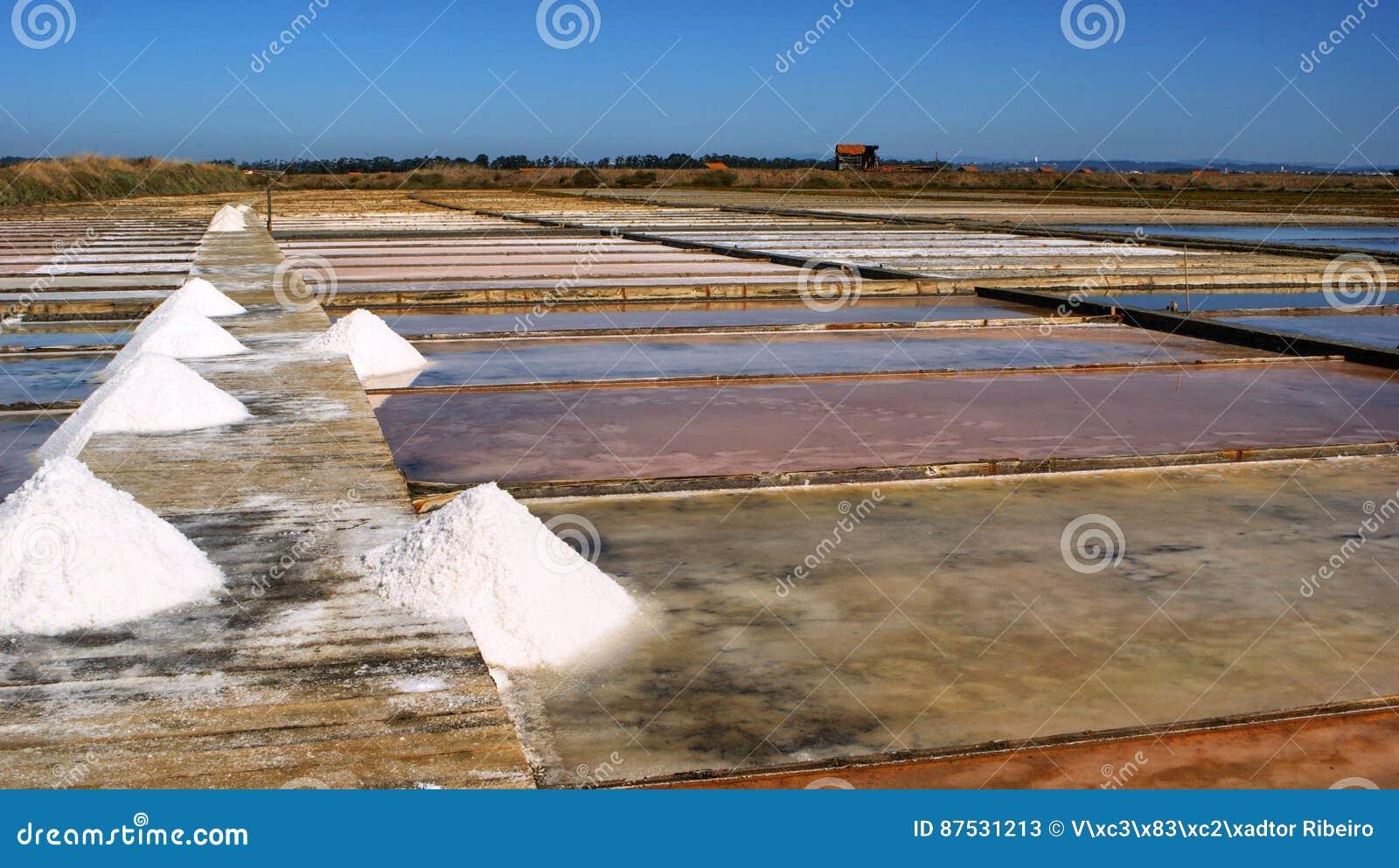 Salt pans on a saline exploration