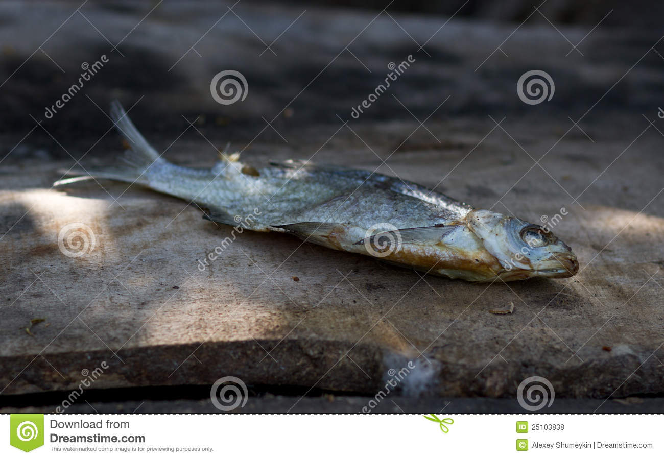 Salted dried fish royalty free stock photos image 25103838 for Dried salted fish