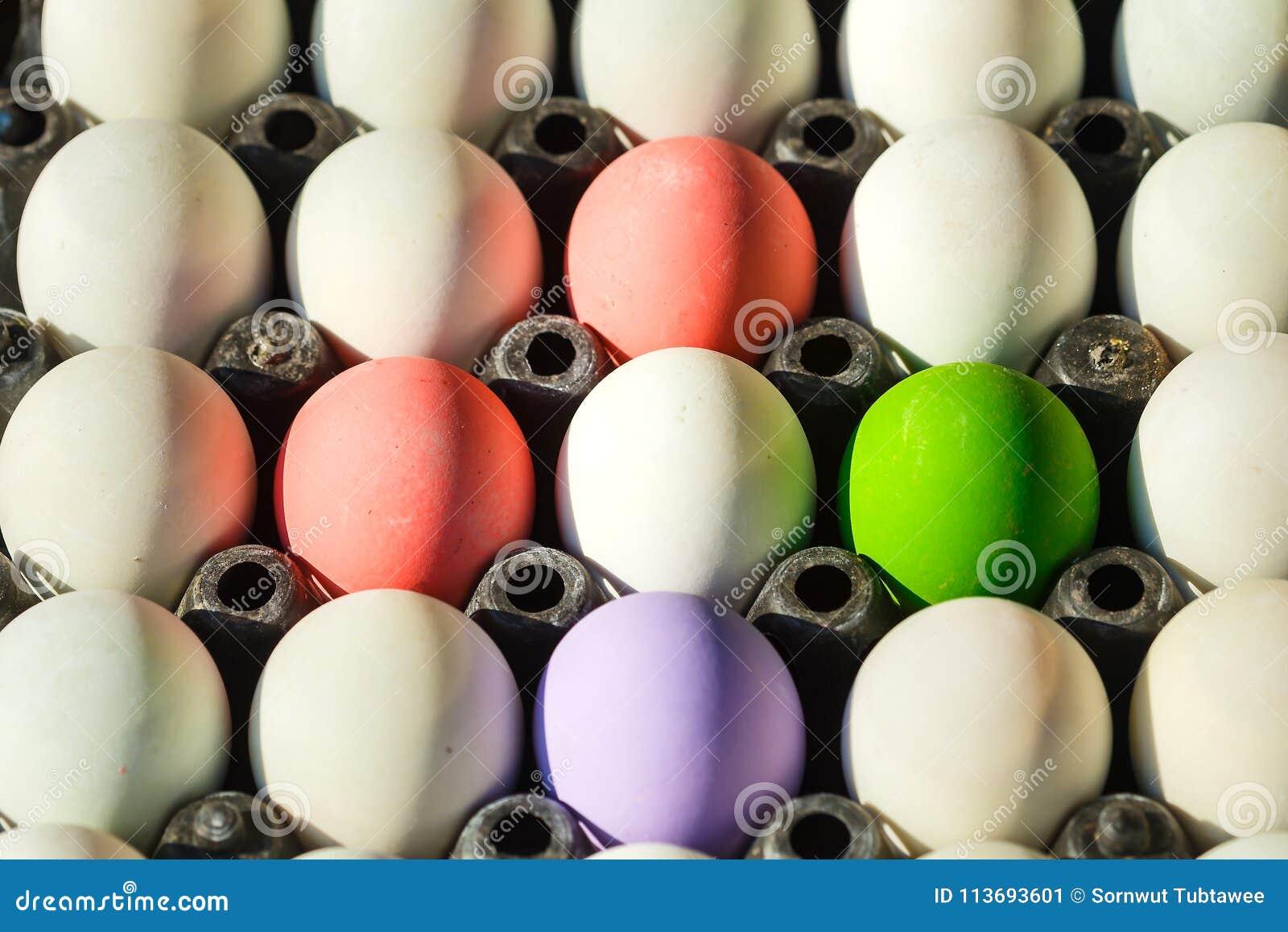 Salted egg/easter eggs/Century egg.