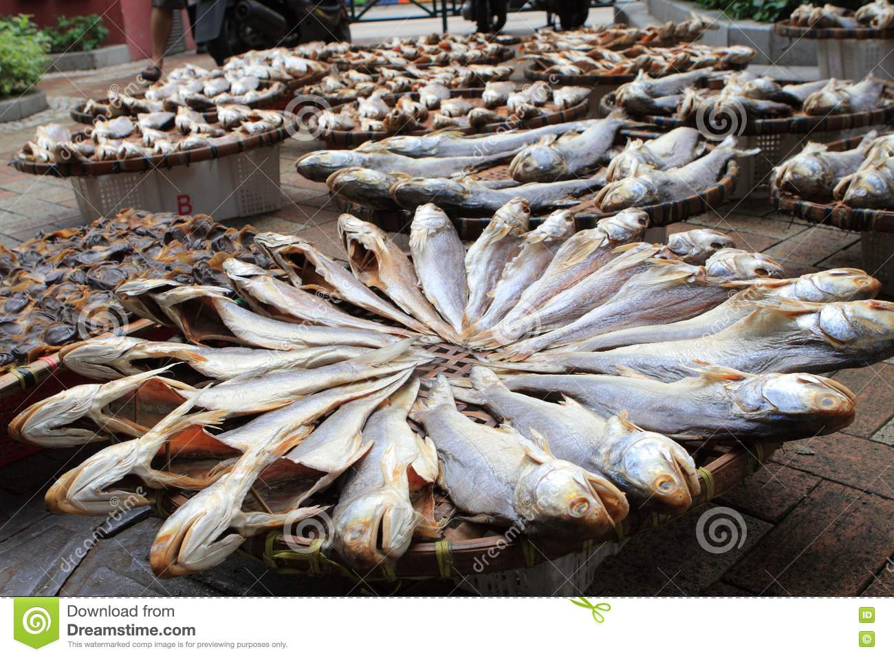 Salted fish stock photo image 14111000 for Chinese salted fish