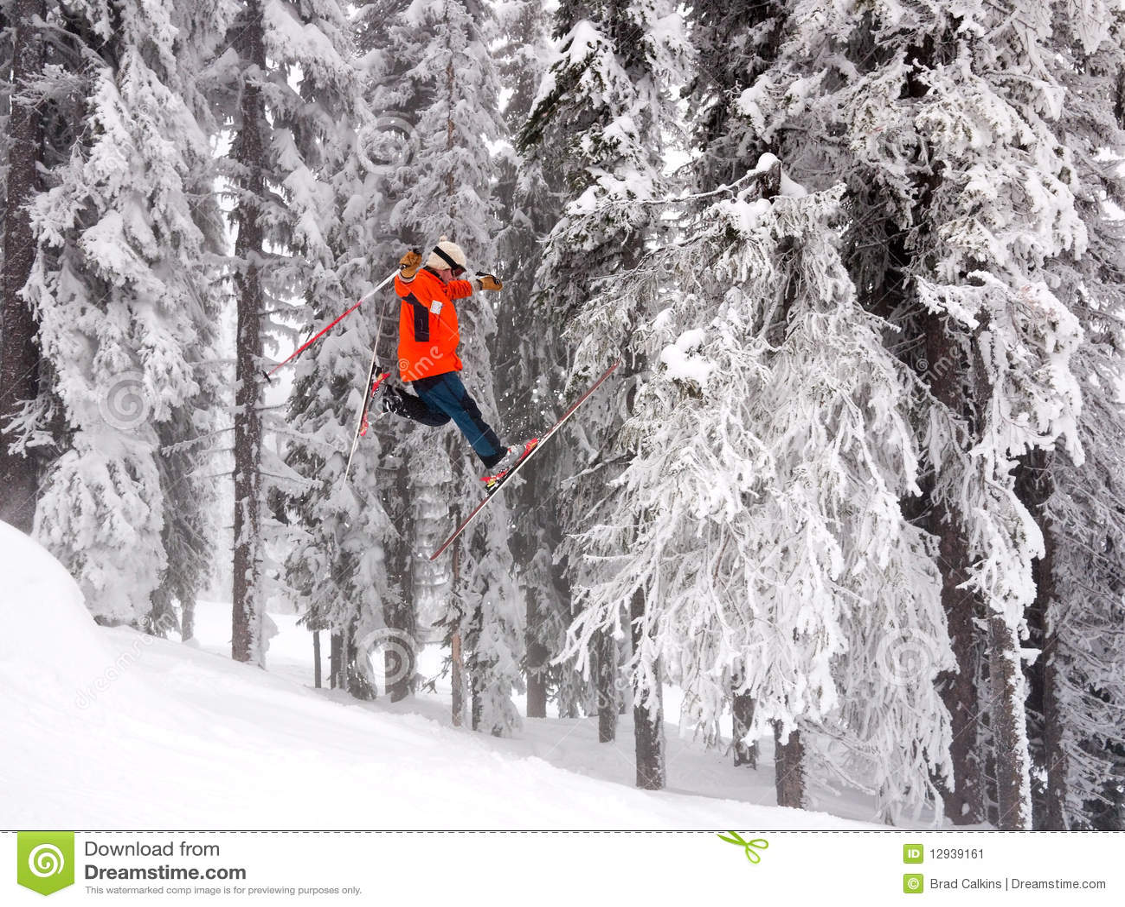 Salto de esquí