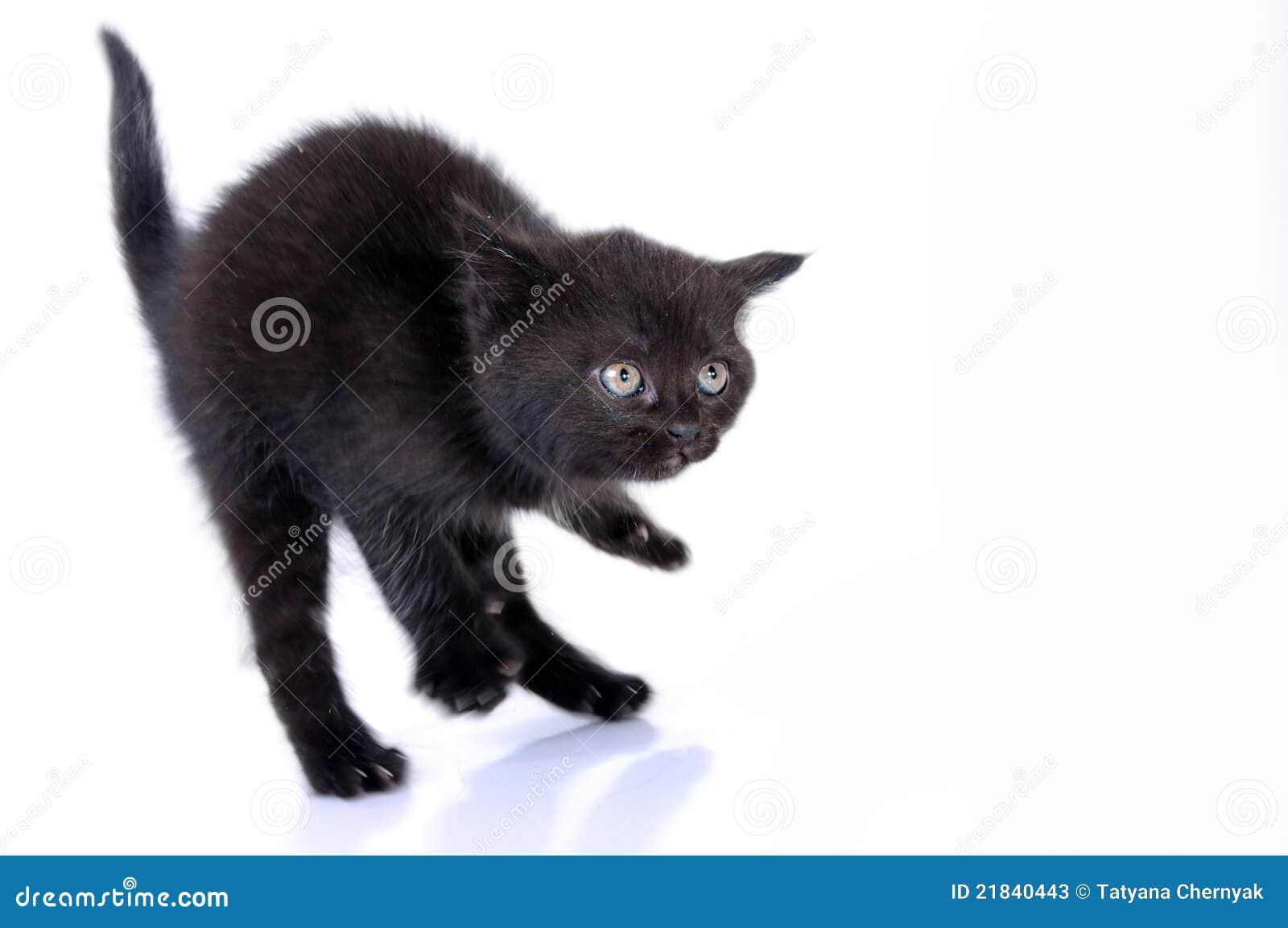 Salto de Kitteng