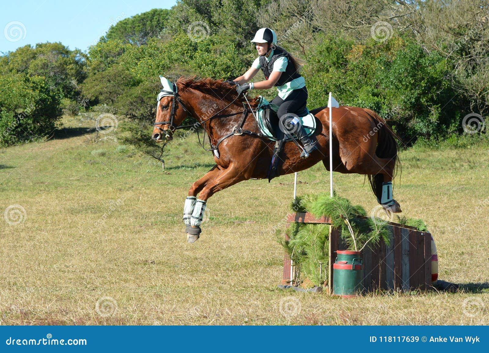 Salto del cavaliere e del cavallo