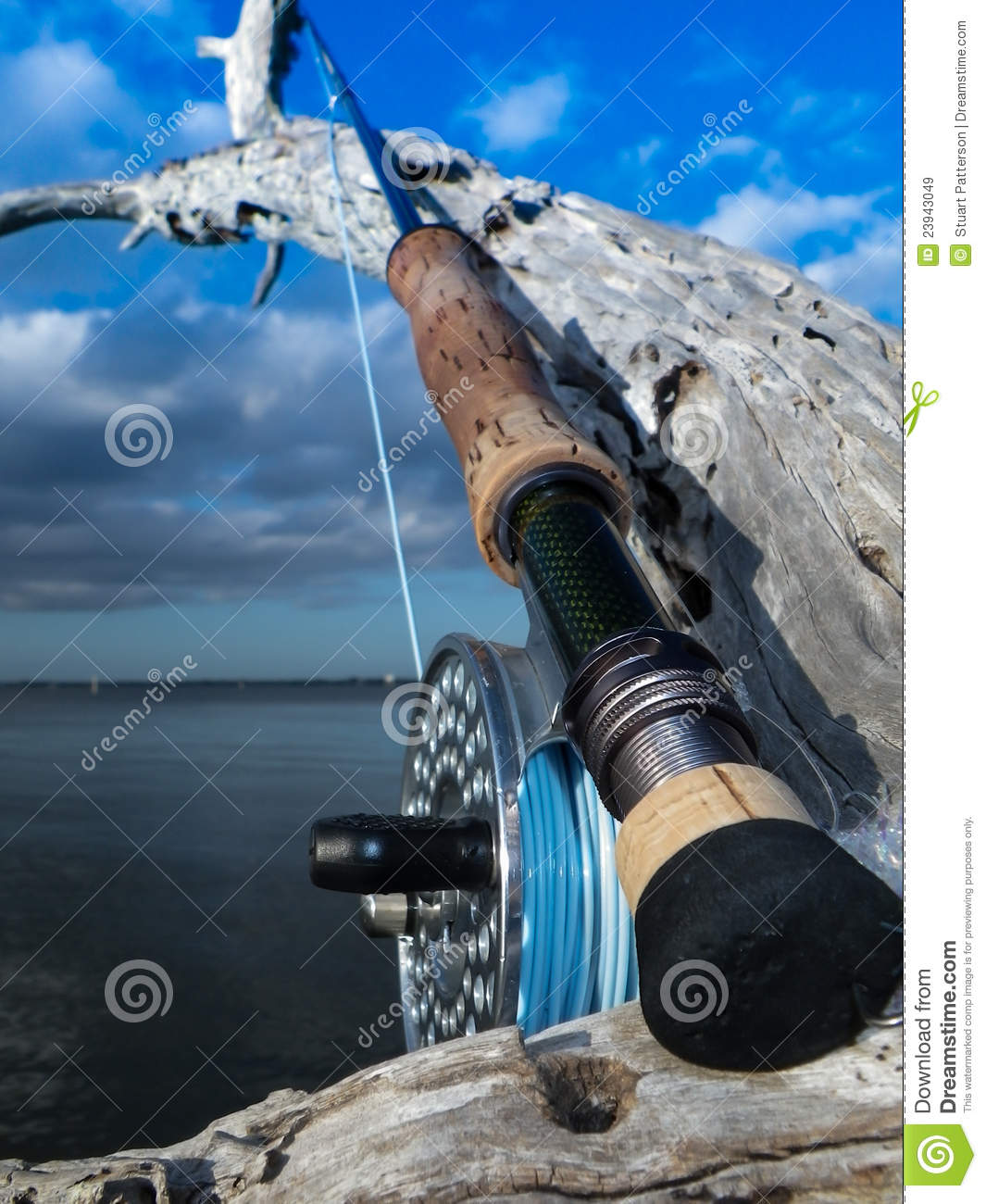 Saltwater fly rod and reel stock image image of fish for Saltwater fly fishing reels