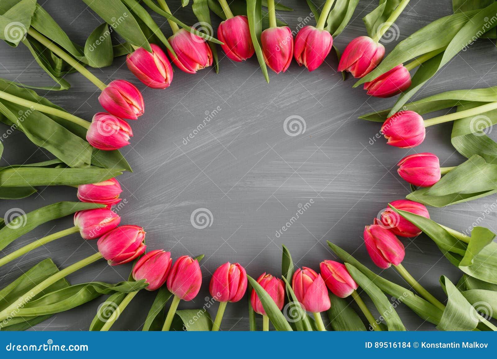 Saludo botánico del día del ` s de la mujer del concepto de las flores salvajes de la guirnalda de Art Floral Background Round Fr