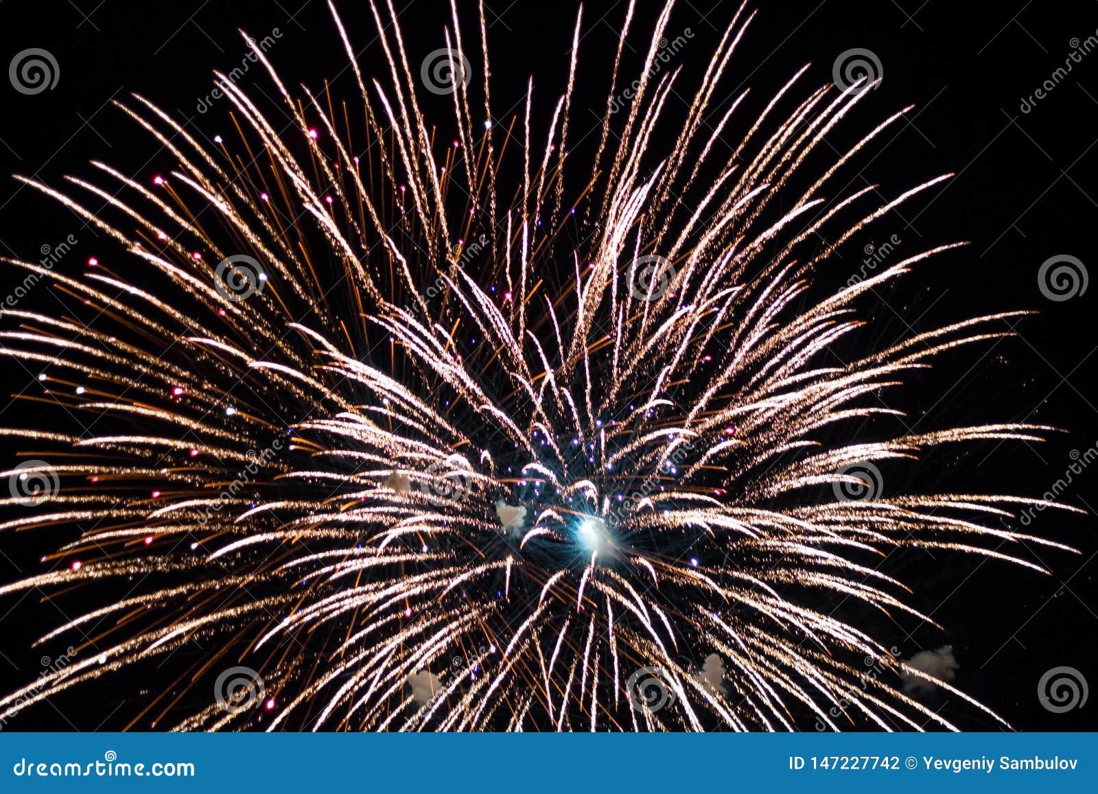 Salut, fajerwerki W nocnym niebie Pirotechniczny przedstawienie na wakacje Wybuch wiele petardy