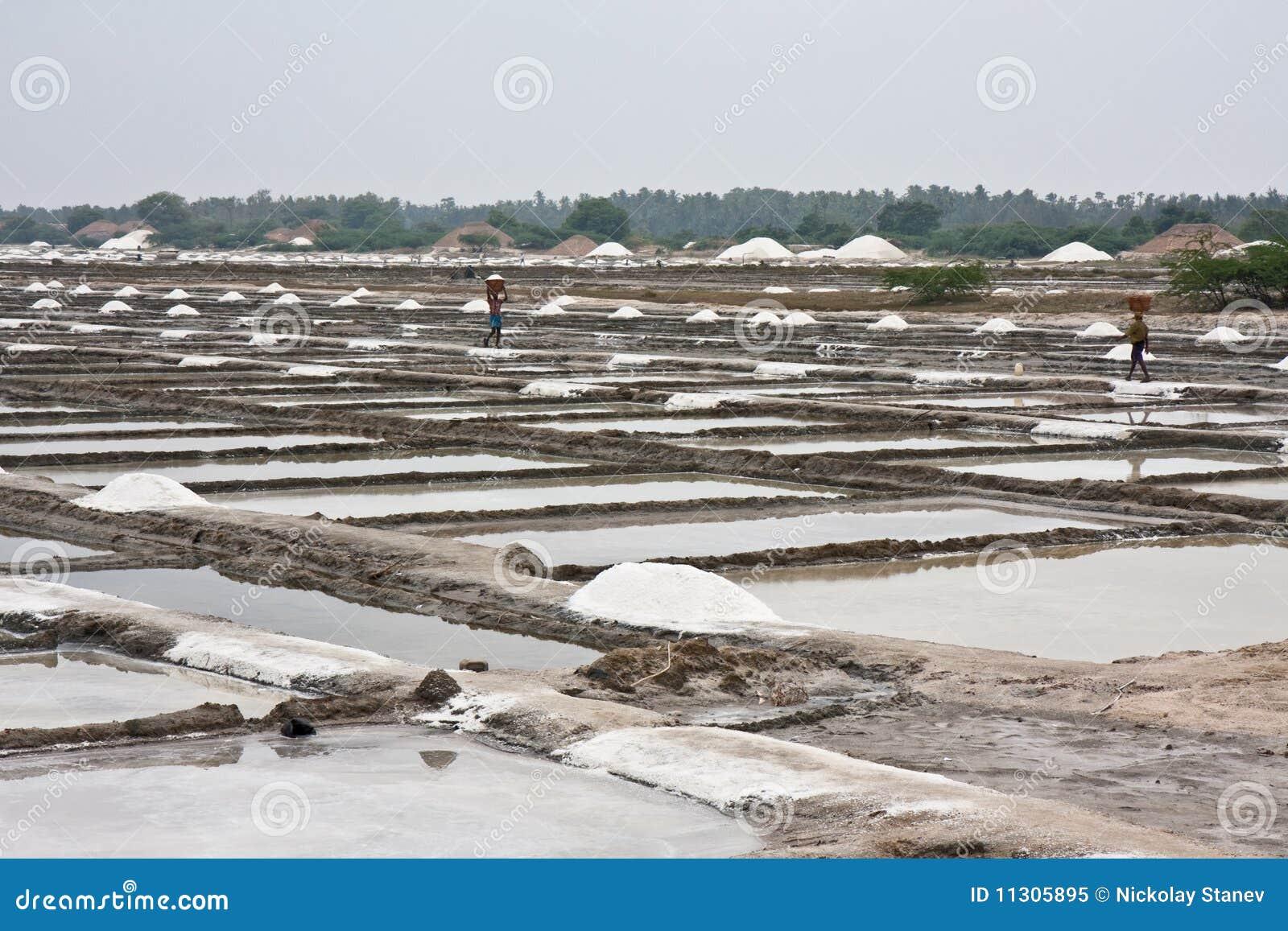Salzig in Indien