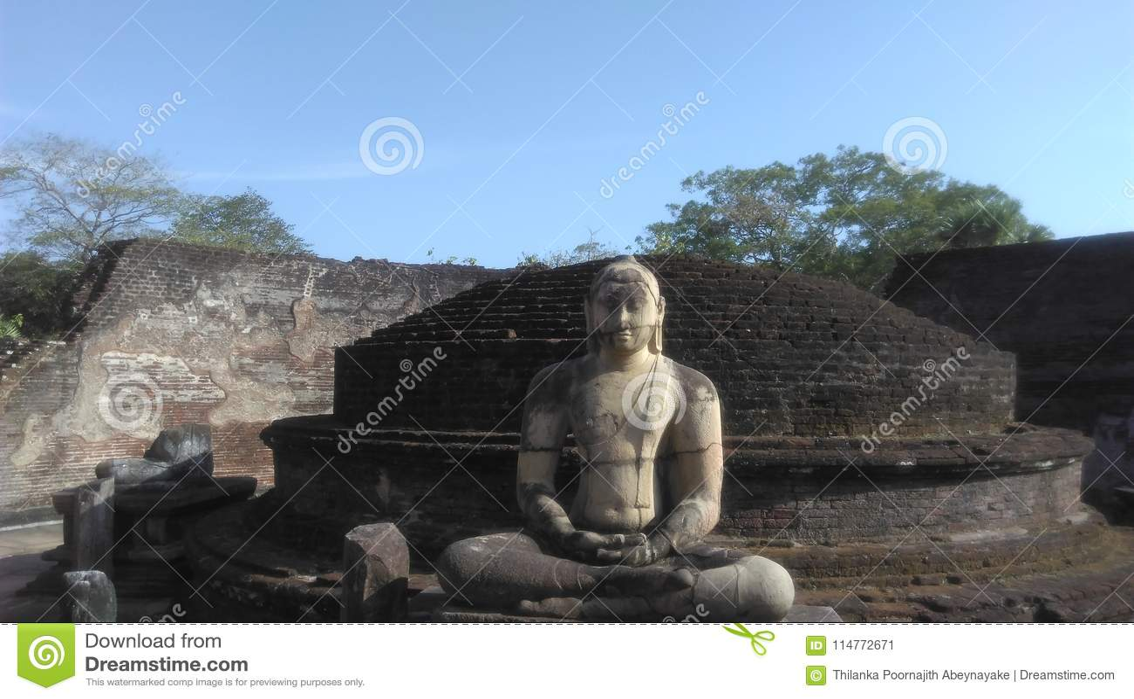 Samadhi菩萨雕象anuradapuura斯里兰卡