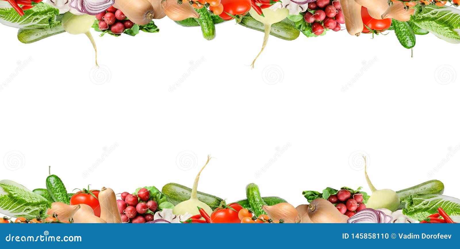 Samenstelling met diverse types van groenten in het hogere en lagere deel van het kader Ge?soleerd op wit Plaats voor tekst